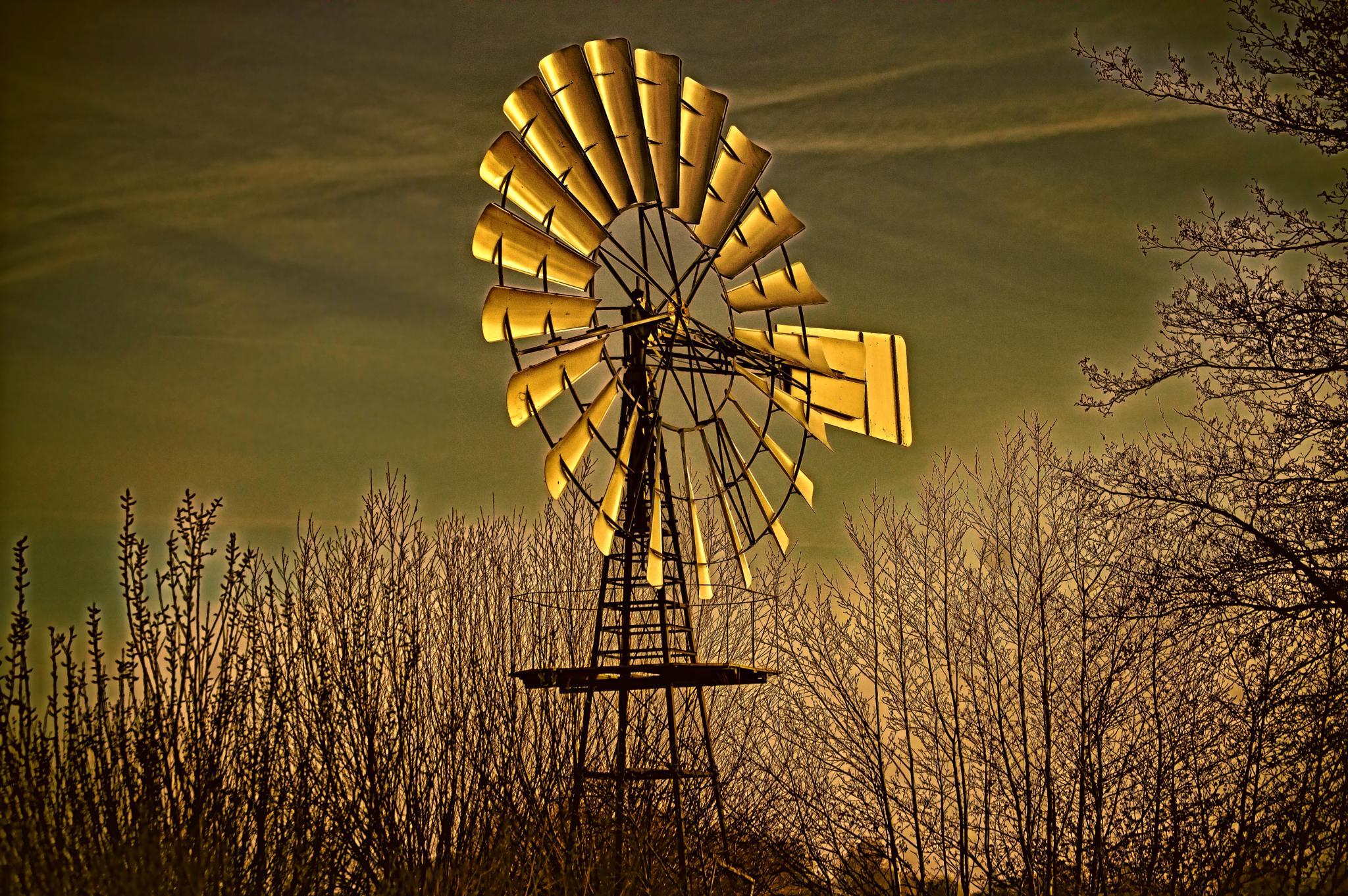 Dutch Country by Ensminger Art