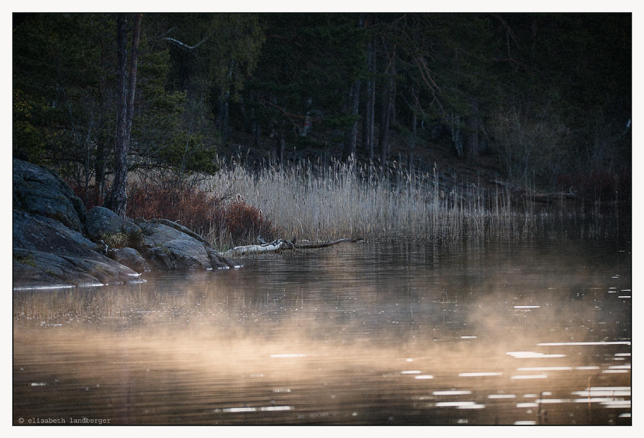 Morning by Lake Gommaren by Elisabeth Landberger