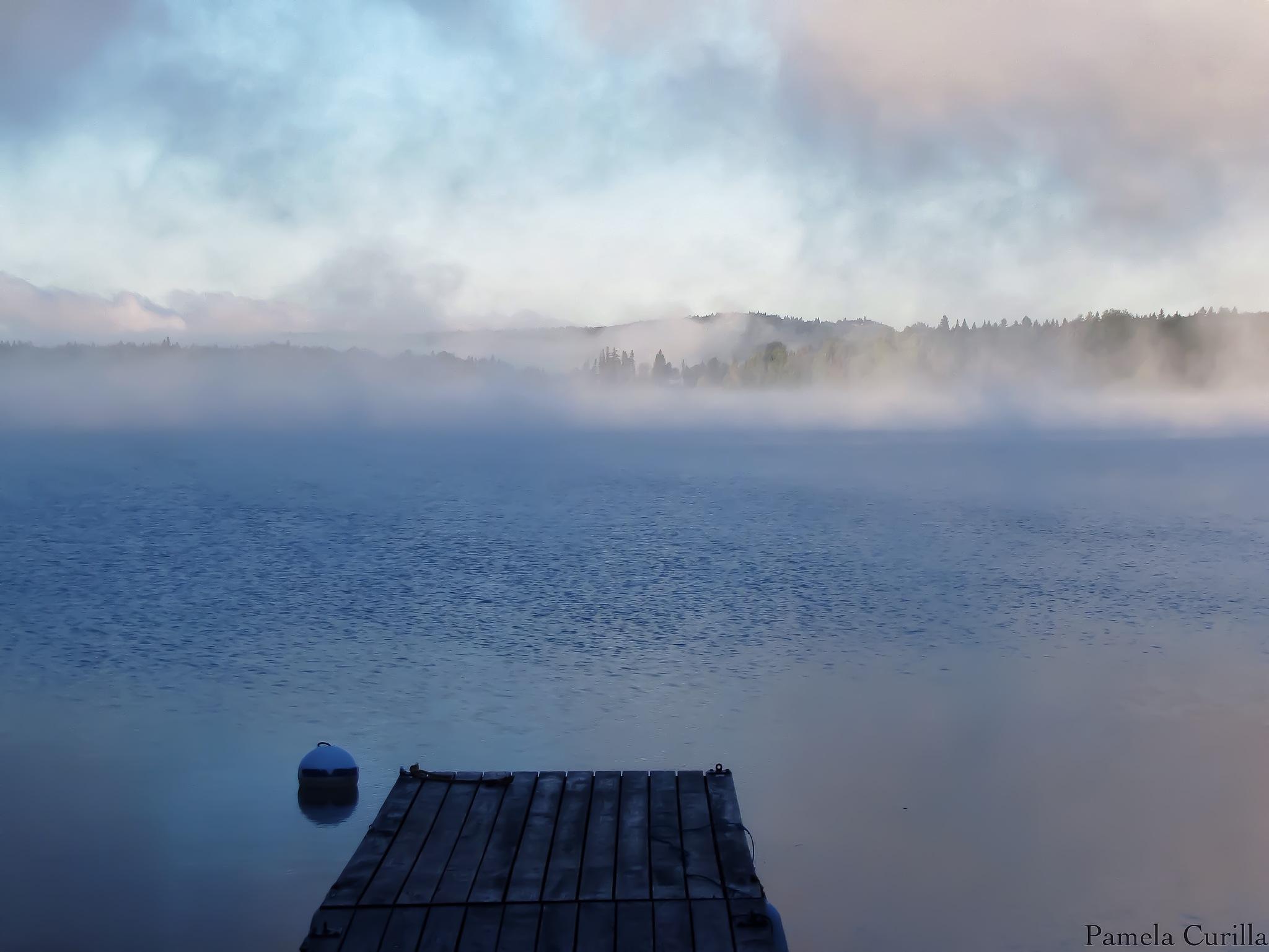 Misty Morning by PamelaZ