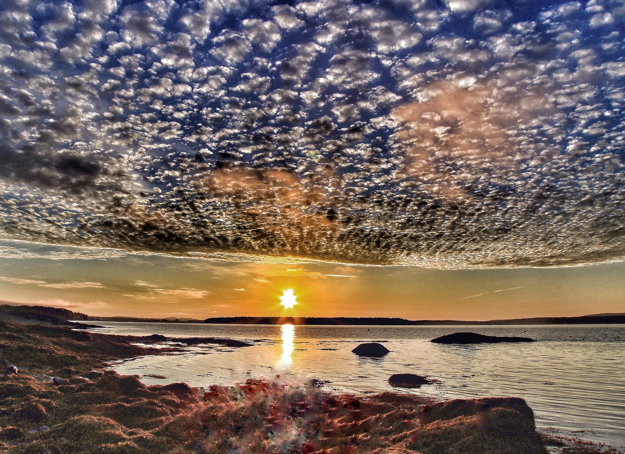 Sunrise on Maine Coast by PamelaZ