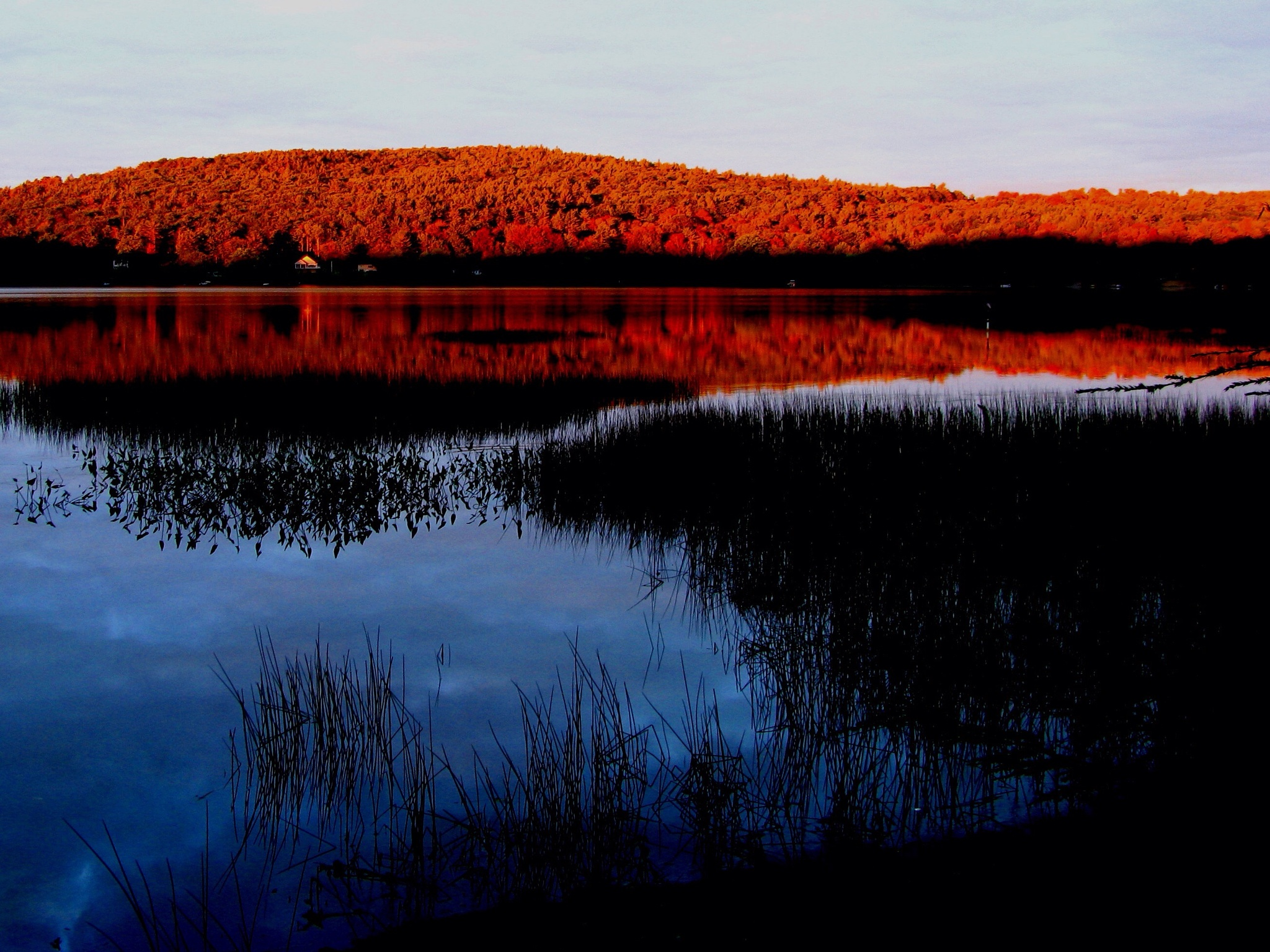 Autumn in New Hampshire by PamelaZ