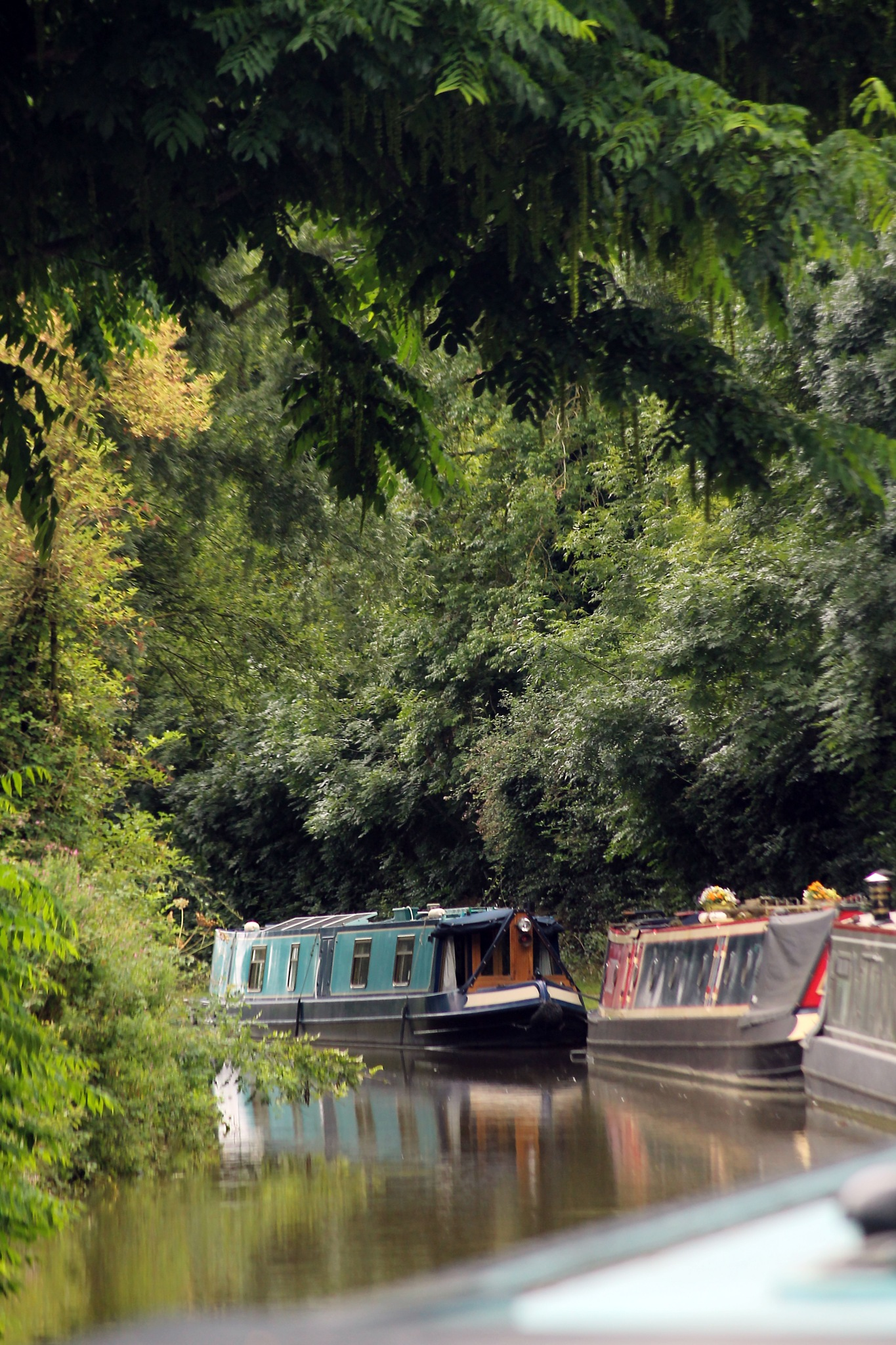down on the tow path by David R Murphy