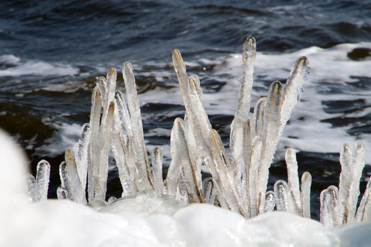 Ice by kor.vantimmeren