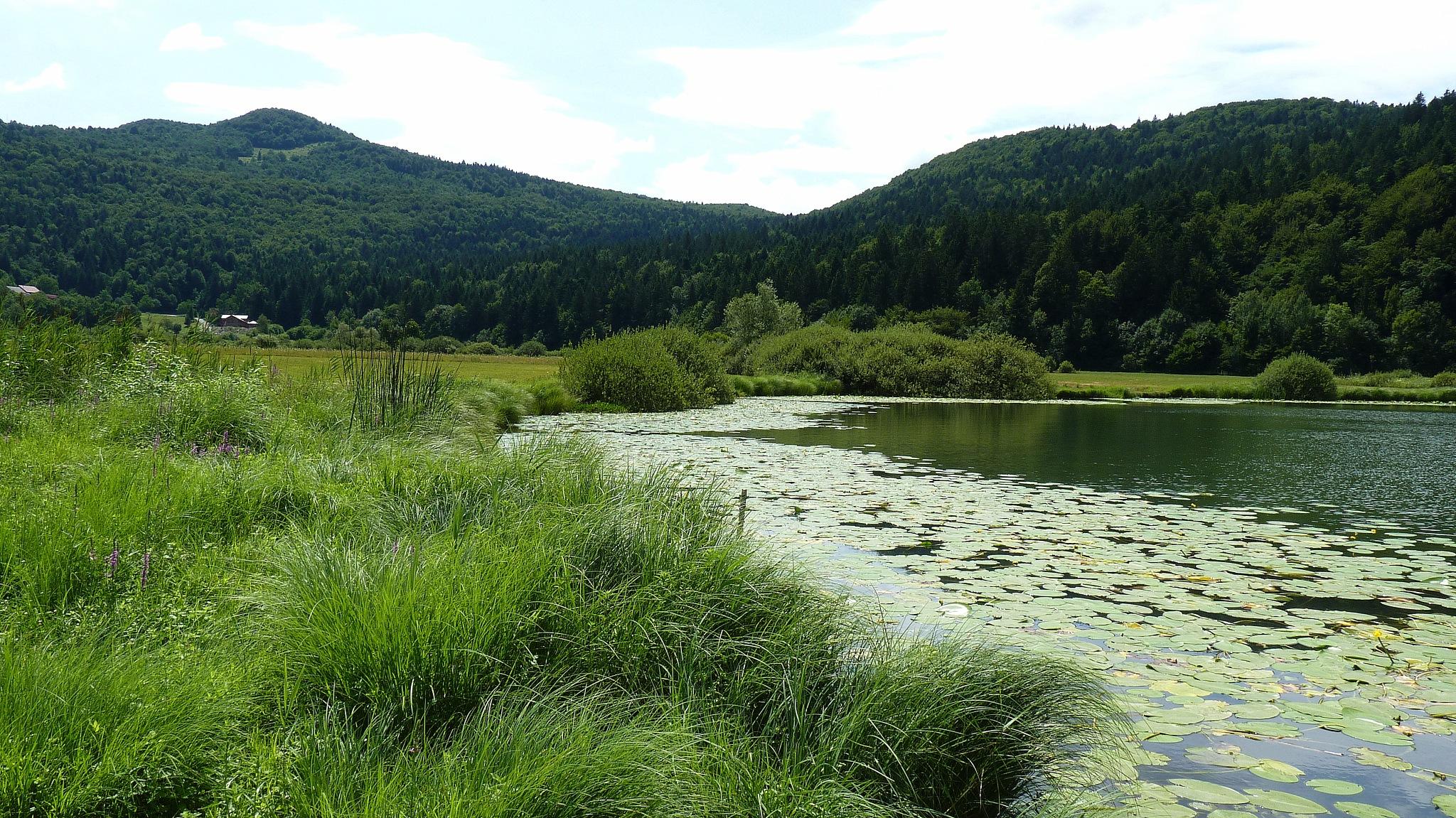 Podpesko jezero by zvnktomasevic