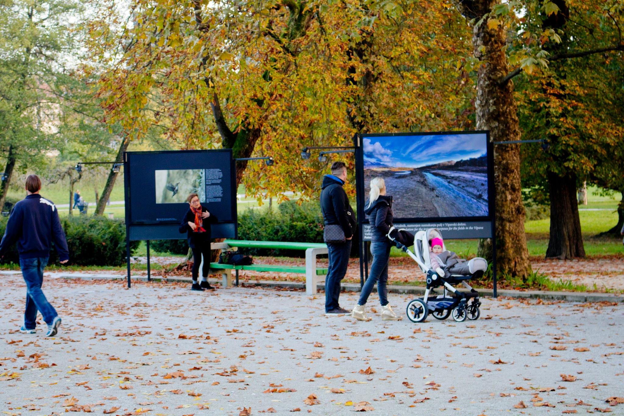 Park Tivoli Ljubljana by zvnktomasevic
