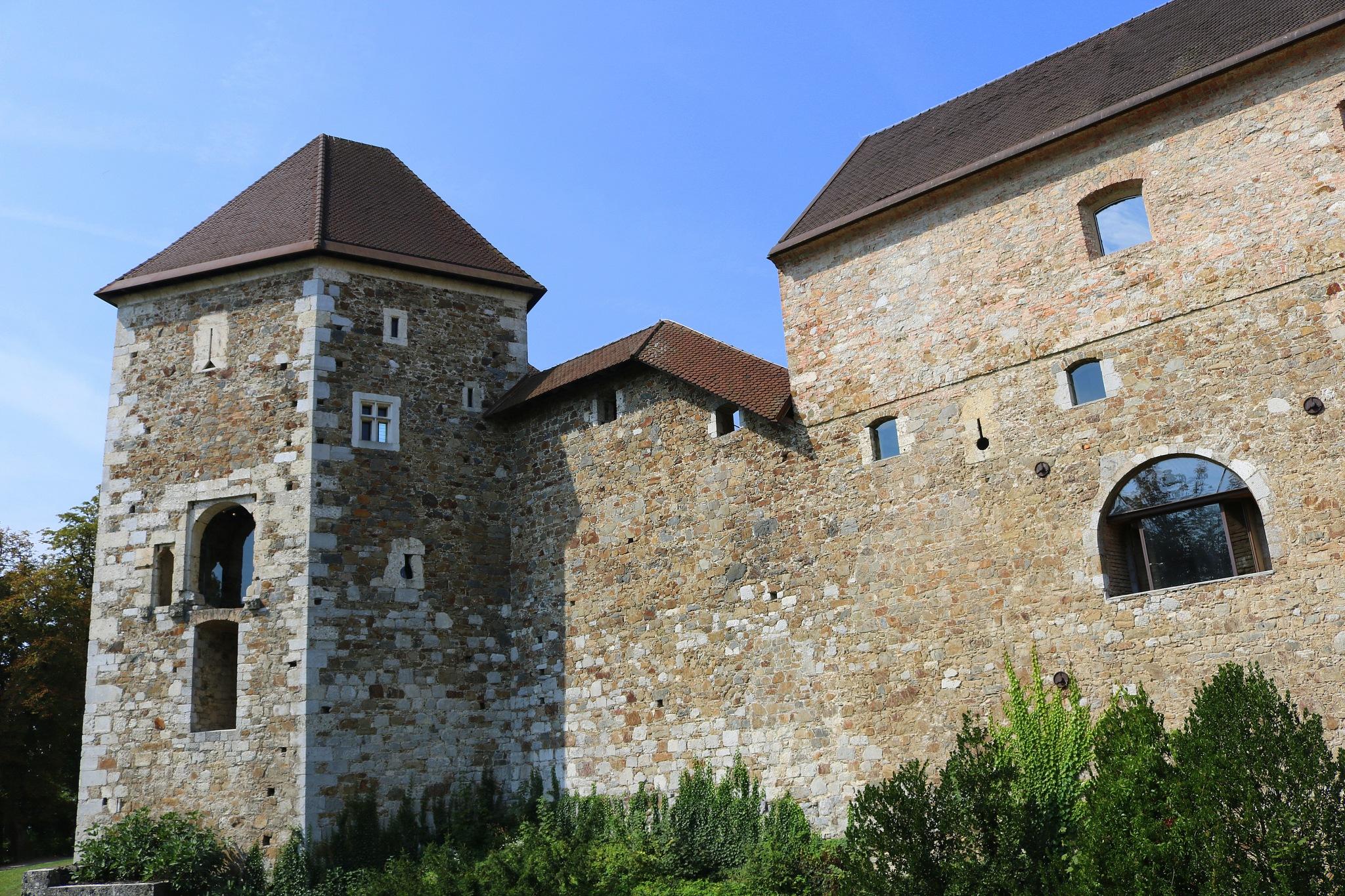 Ljubljanski grad by zvnktomasevic