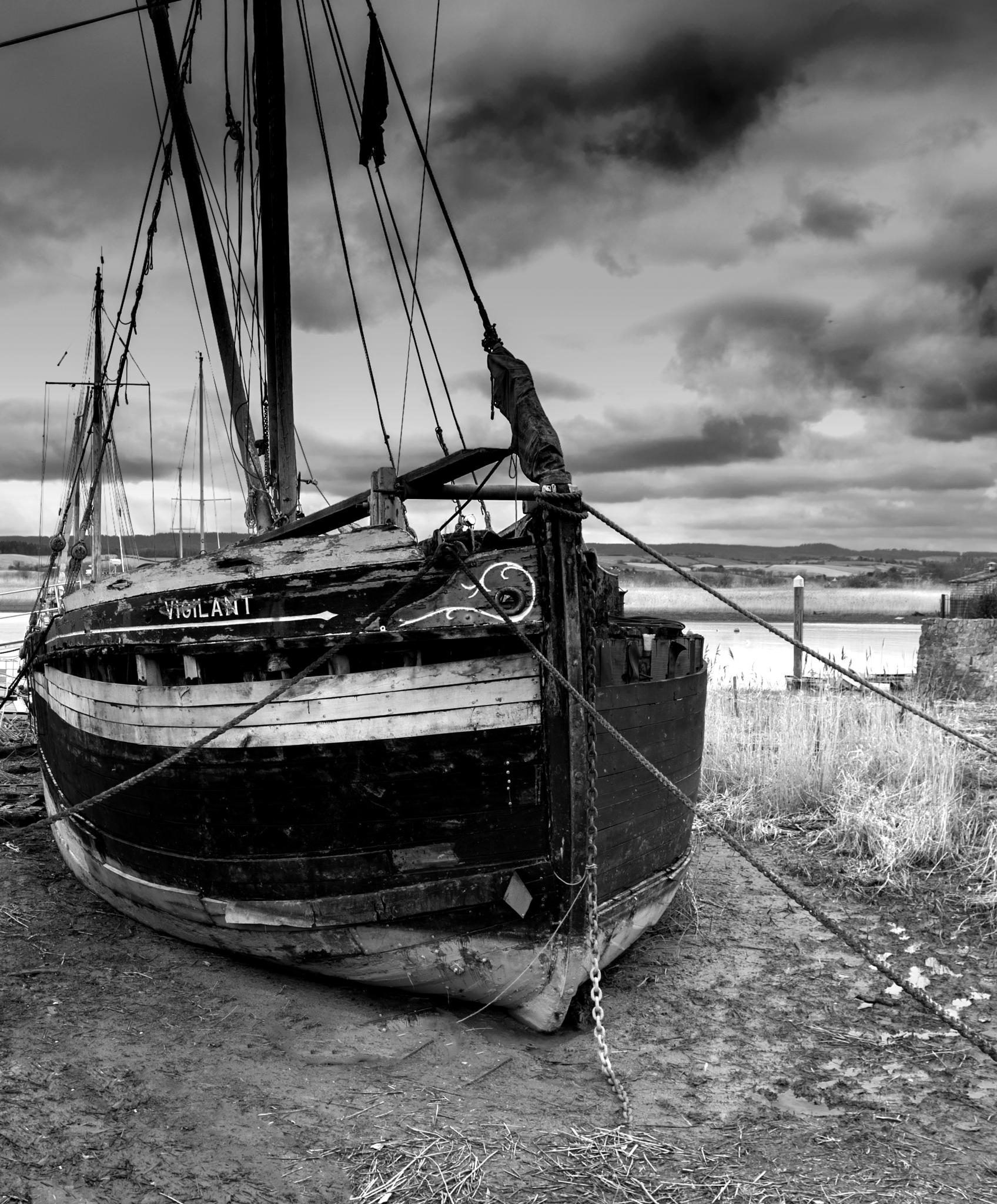 Thames Barge at Topsham by Paul Newman