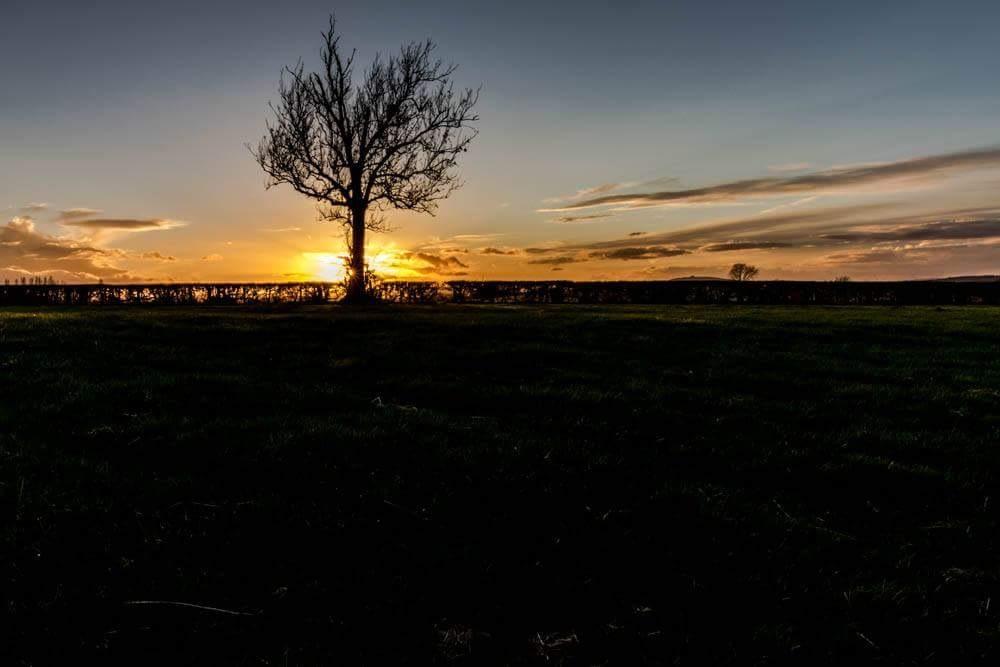 sunset by debra godwin