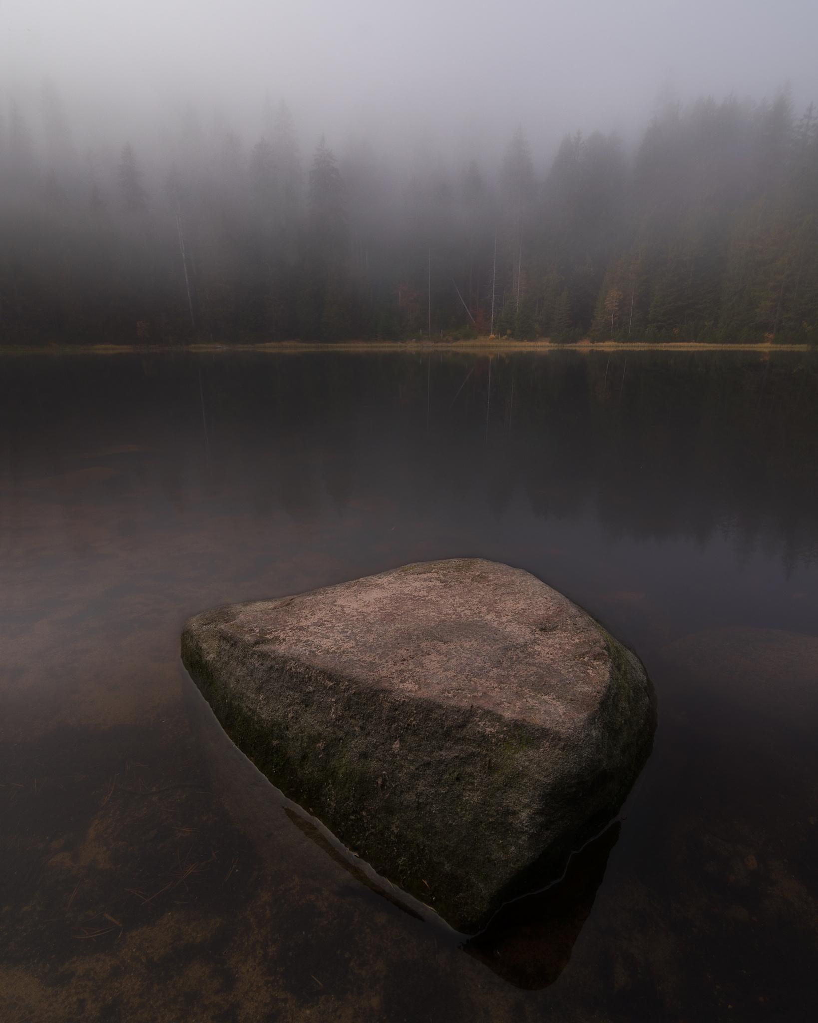 Wilderness  by Fabian Müller