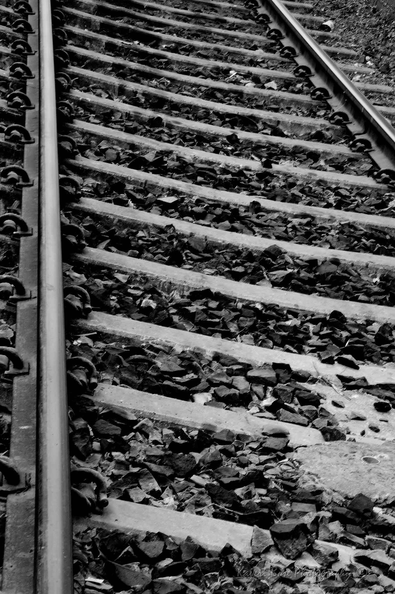 Railway Tracks by Kaveri Bose