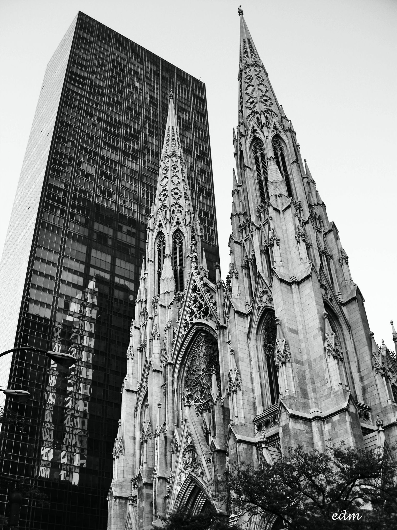 St. Patrick's Cathedral | Archdiocese of New York by ermannoalbano