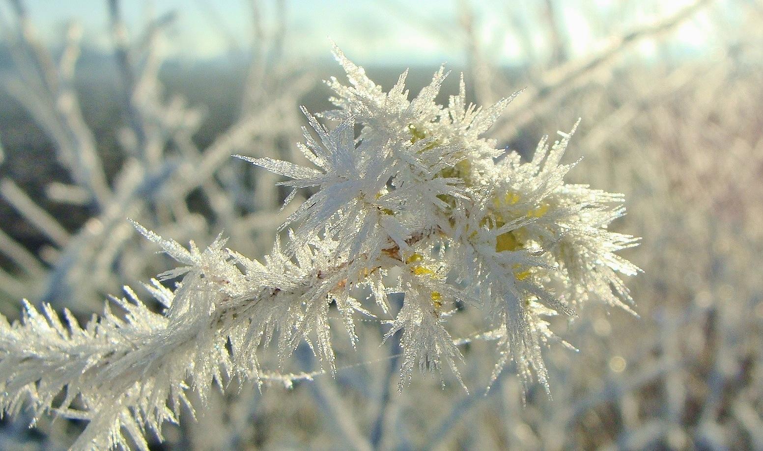 Winter Time by Maarten koudijs