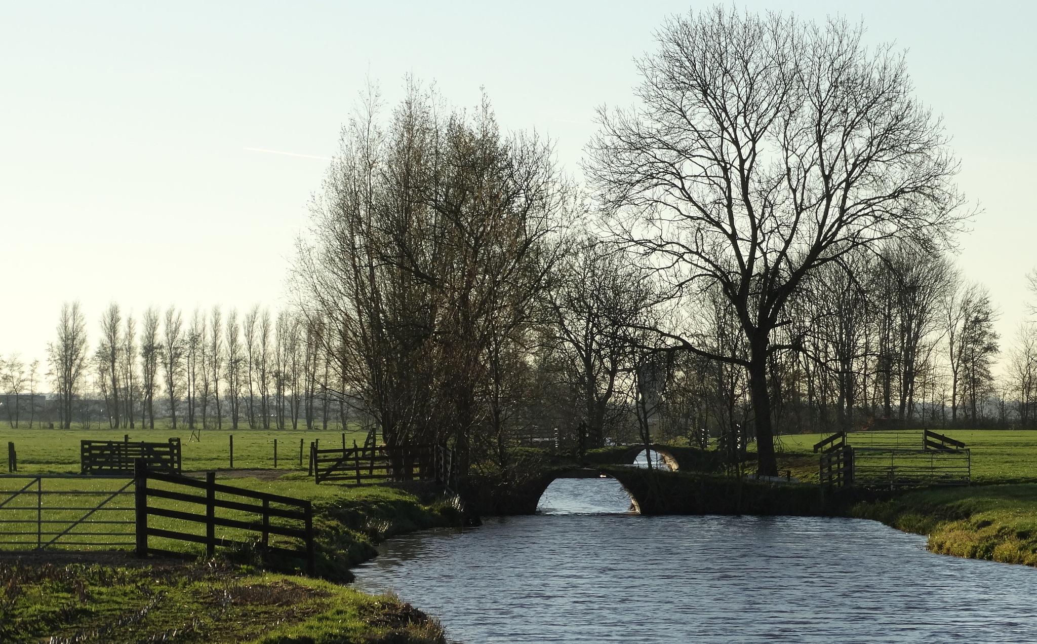 Holland by Krystyna Flis