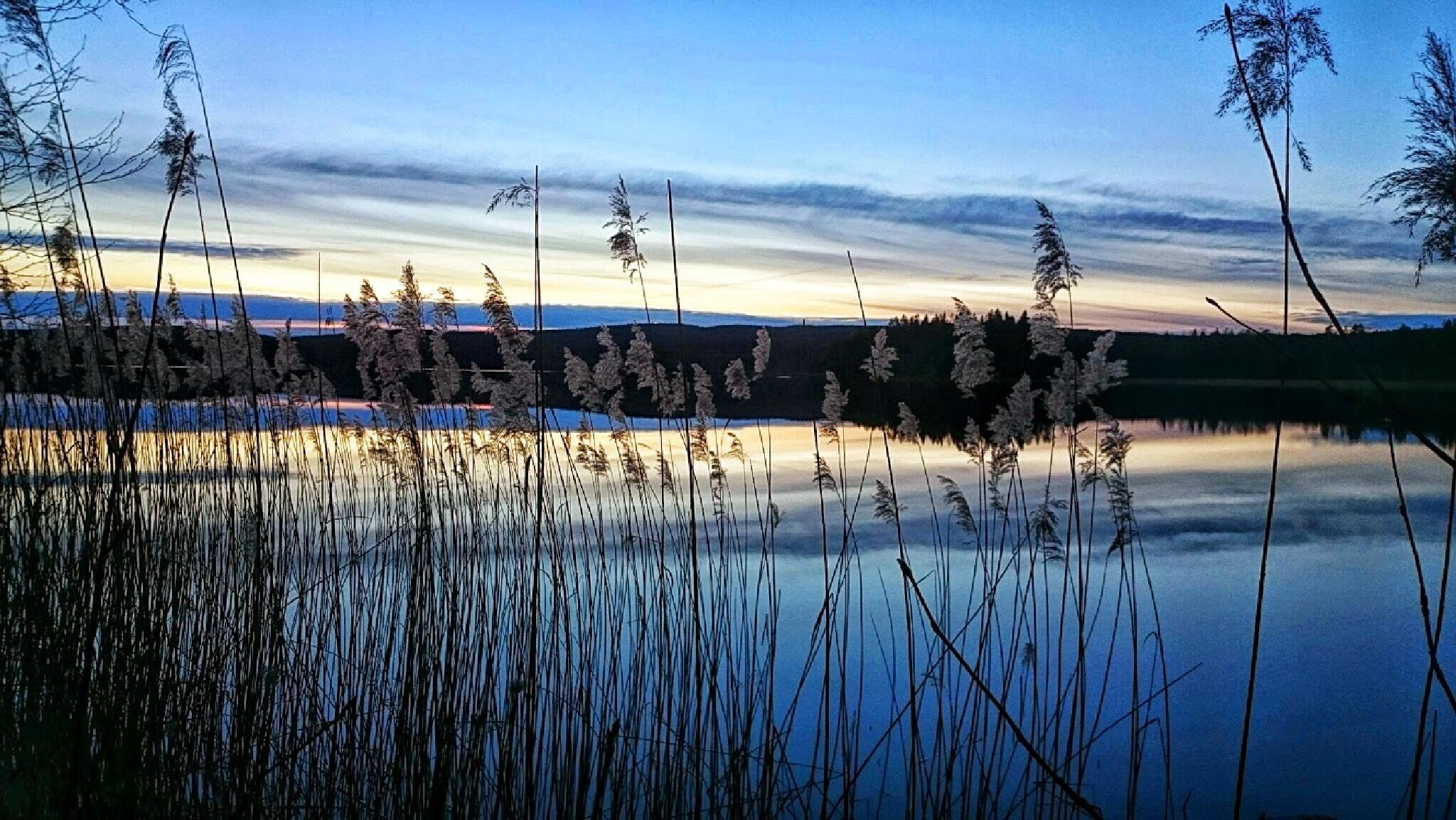 Värmland  by ekegarden1