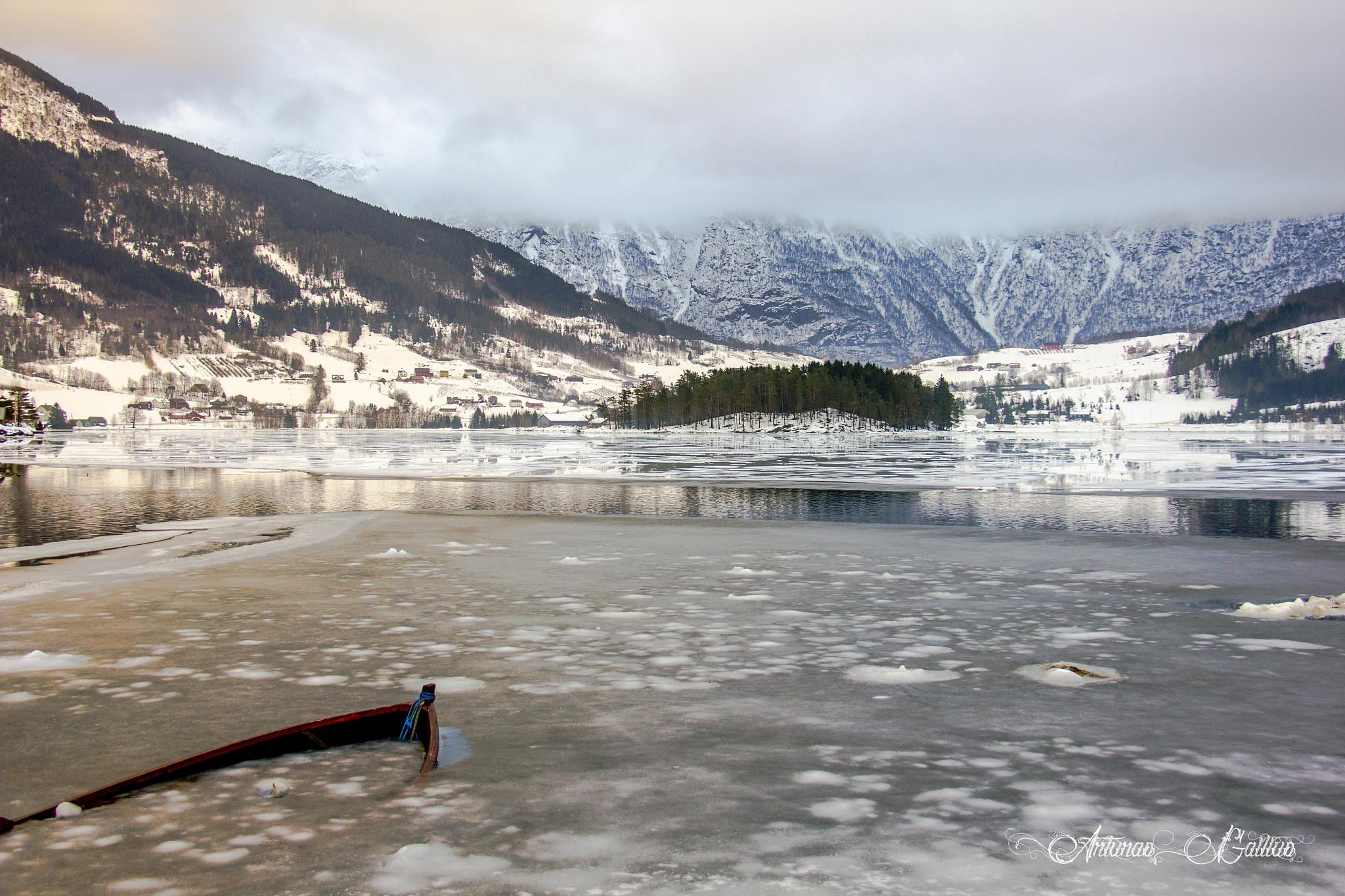 Frozen by Arturas Gailius