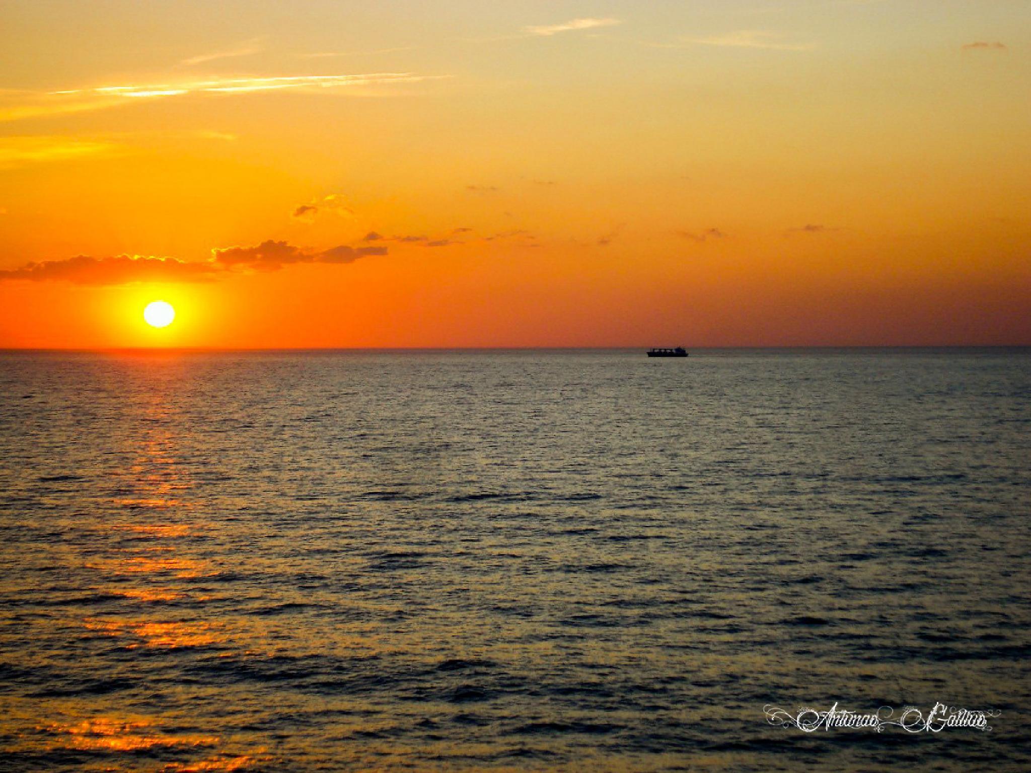 Sunset by Arturas Gailius