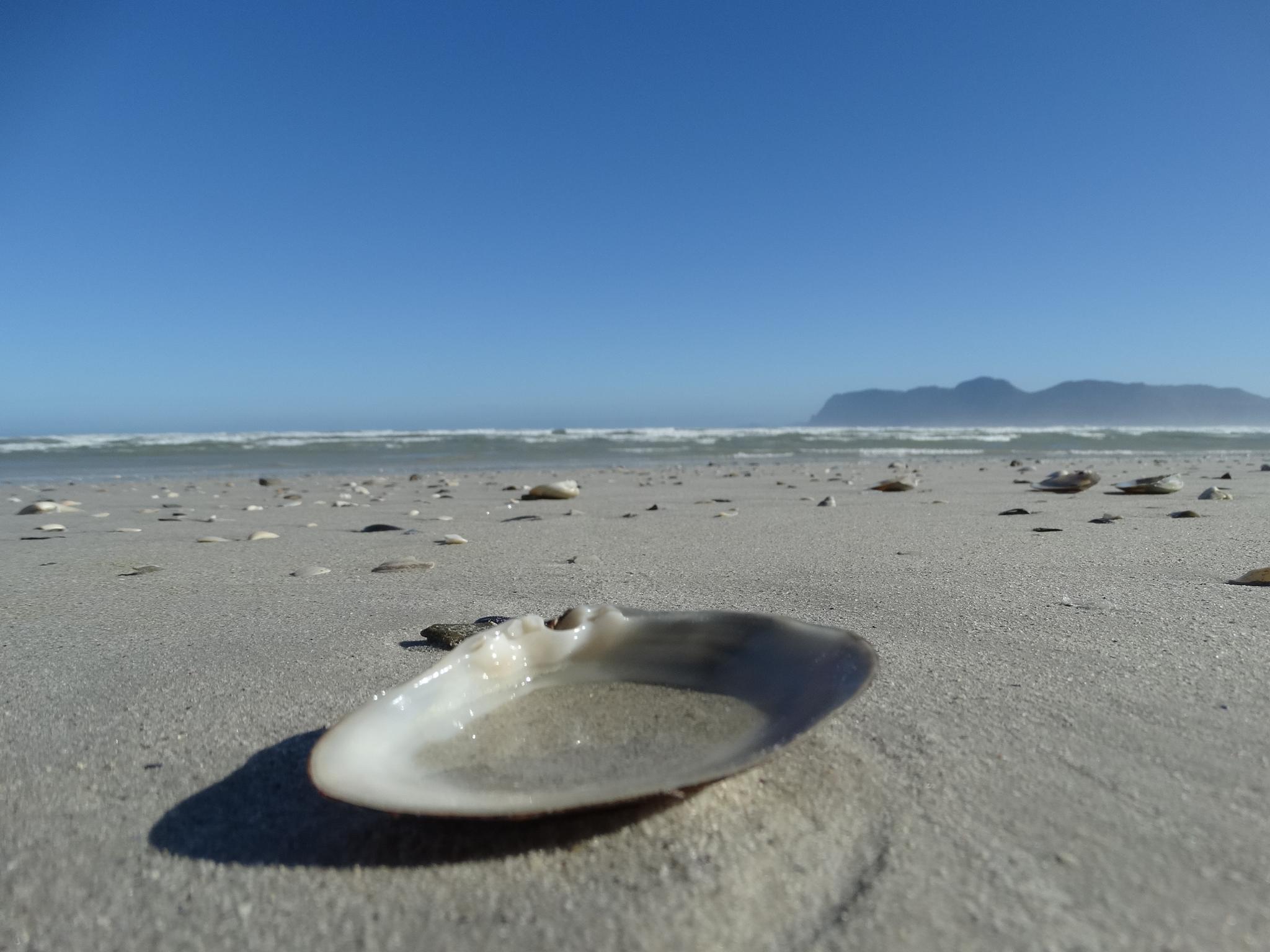 Muizenberg beach by Trudi71