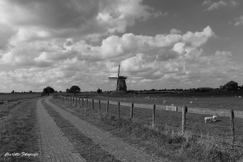 De molen van Etersheim by charlottevanwamelen69