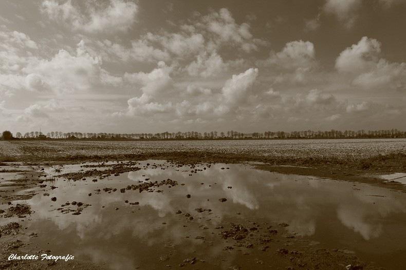 Havermeer by charlottevanwamelen69