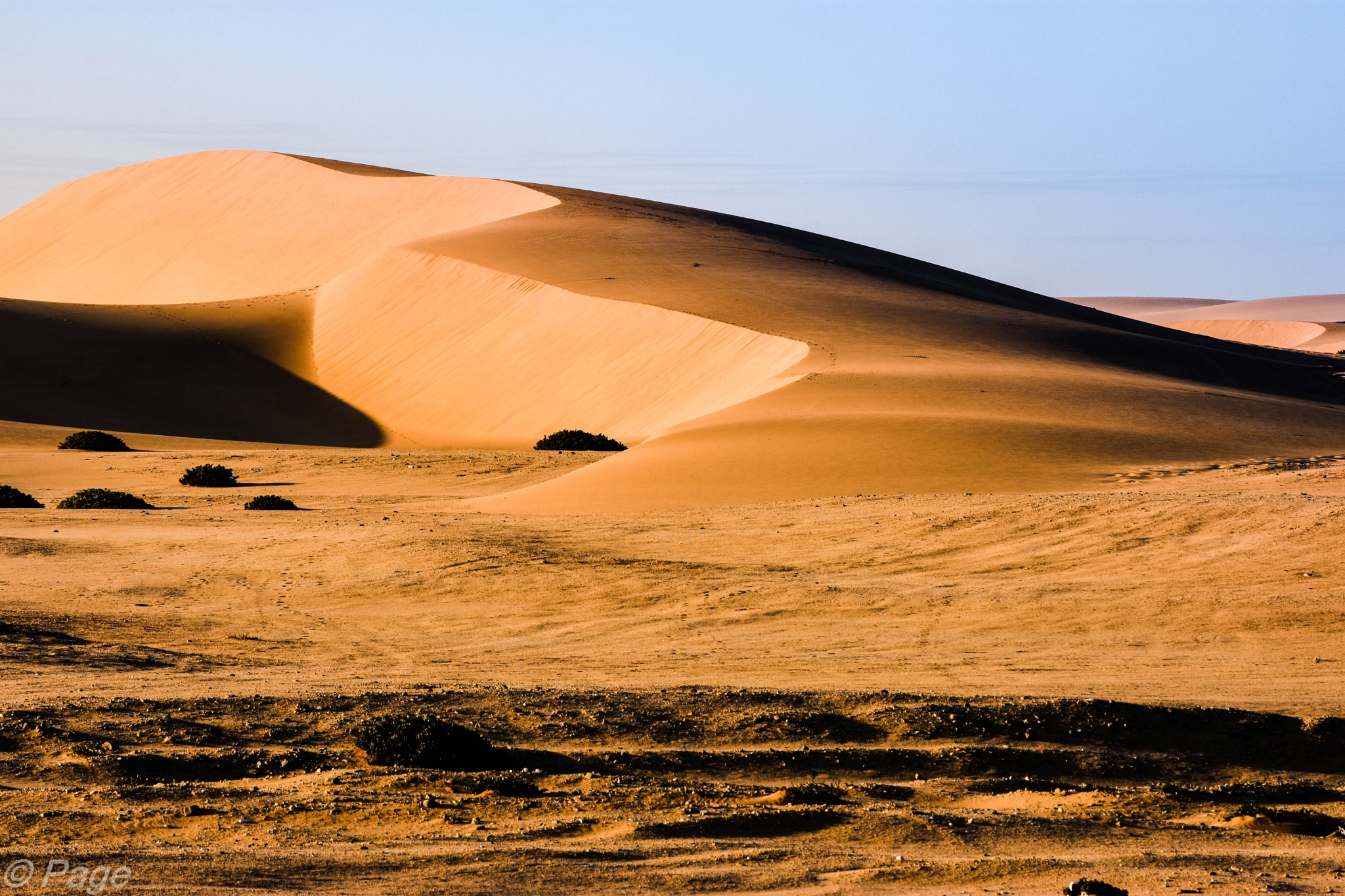 Morning sun kisses to desert dunes by Harrold Page