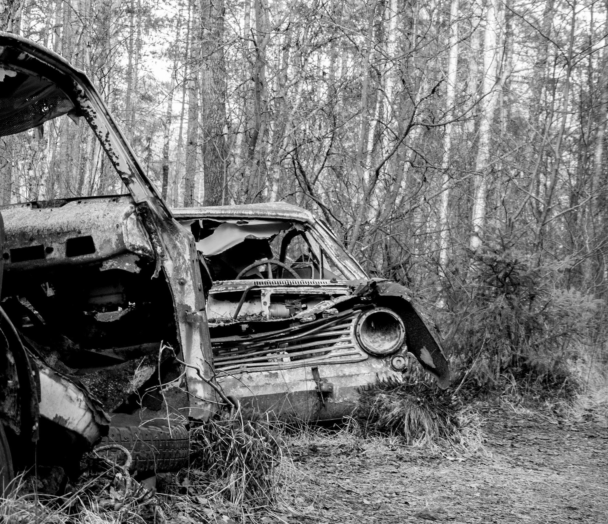 Car cemetery, Småland, Sweden by Ninja-Li Einarsen Stahre