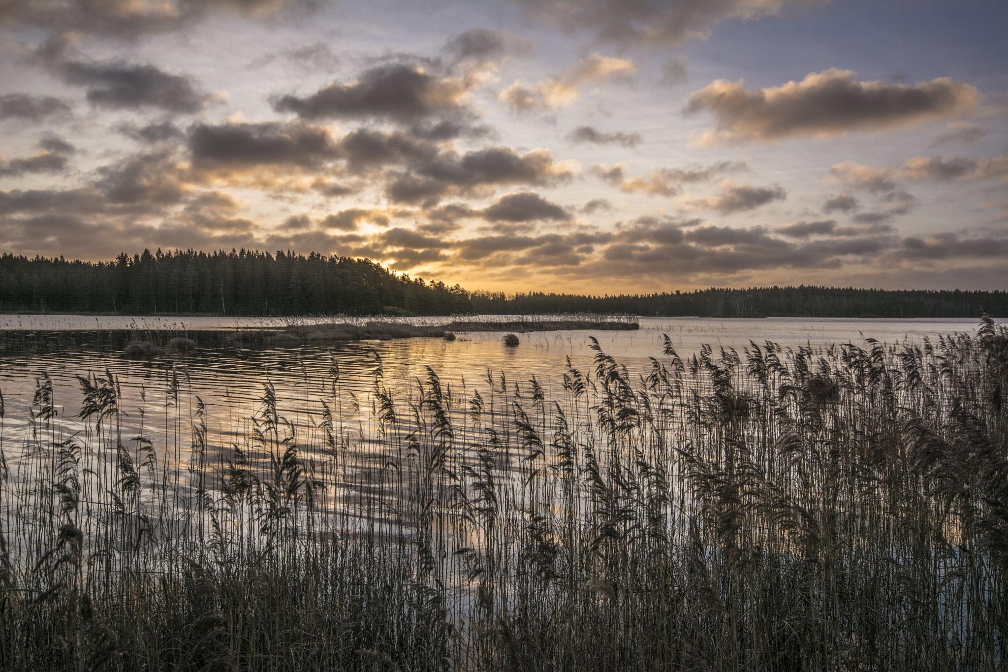 December sunrise by Ninja-Li Einarsen Stahre