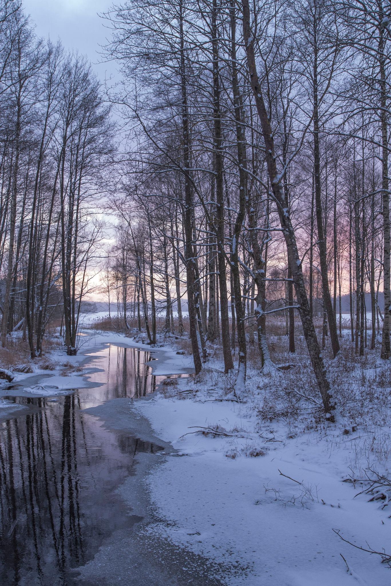 Cold but varm by Ninja-Li Einarsen Stahre