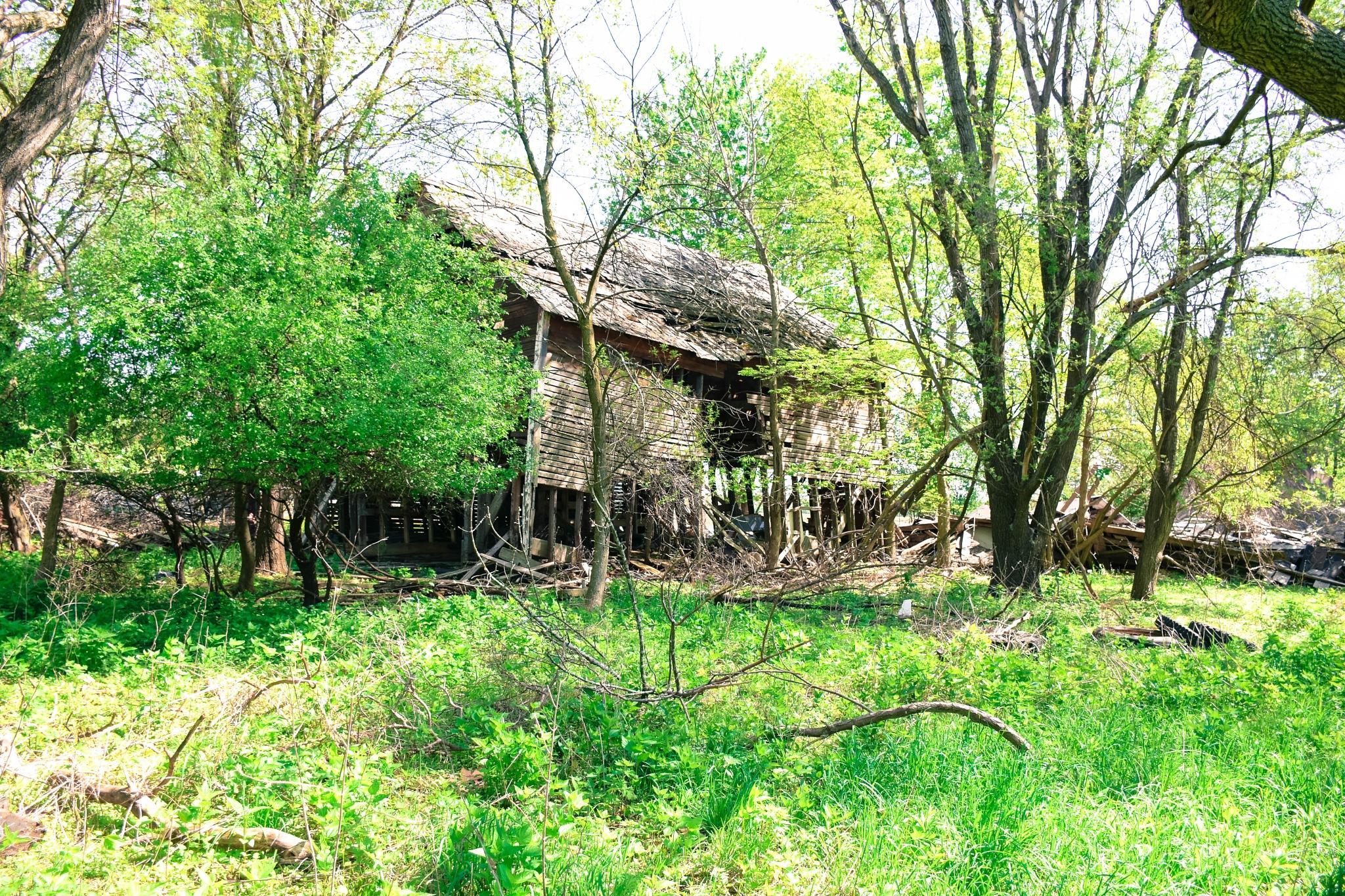 Barn by stacey legg