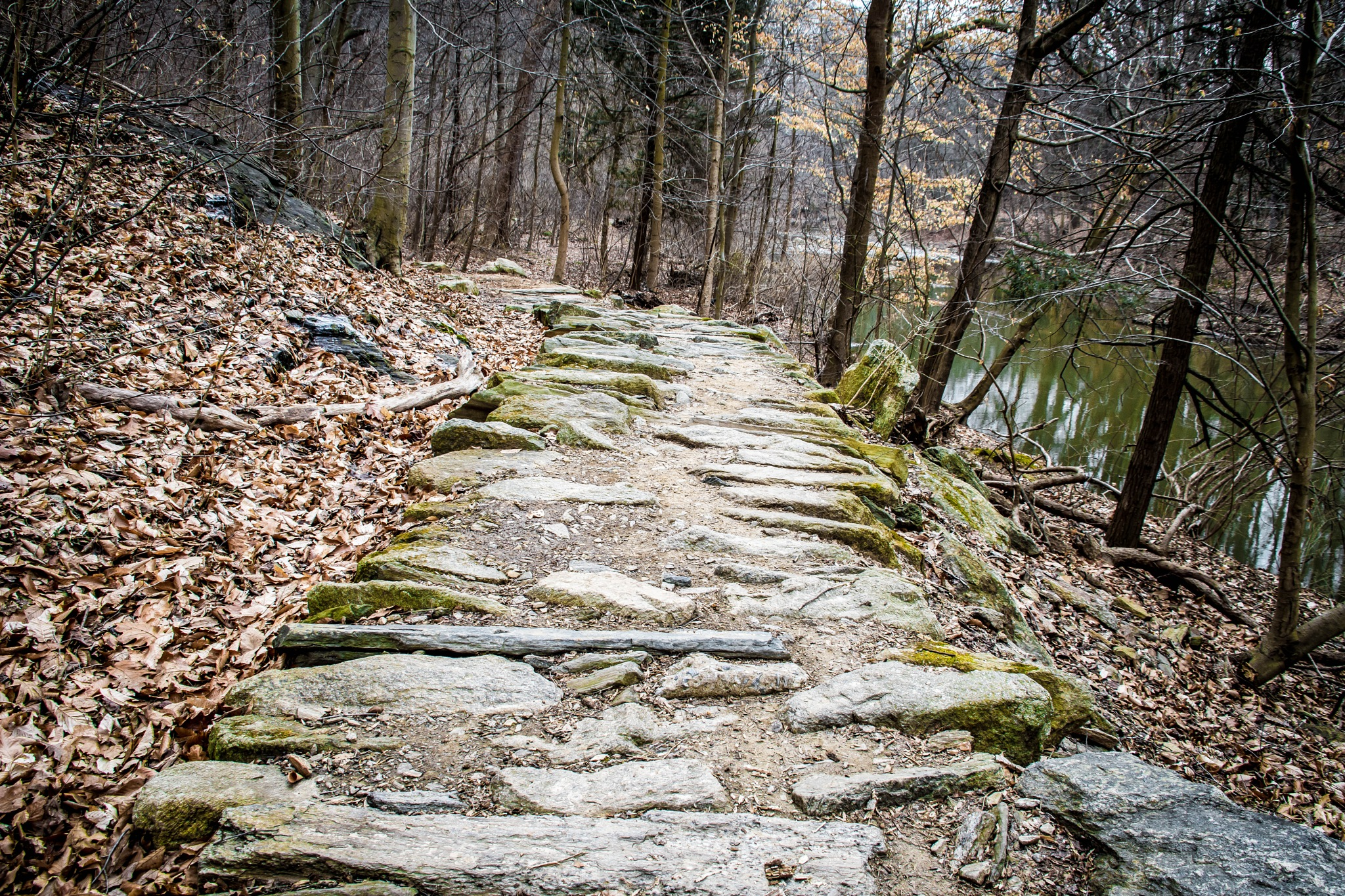Stone Path by stacey legg