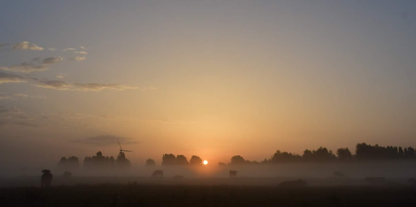 Untitled by Evert-Jan Woudsma