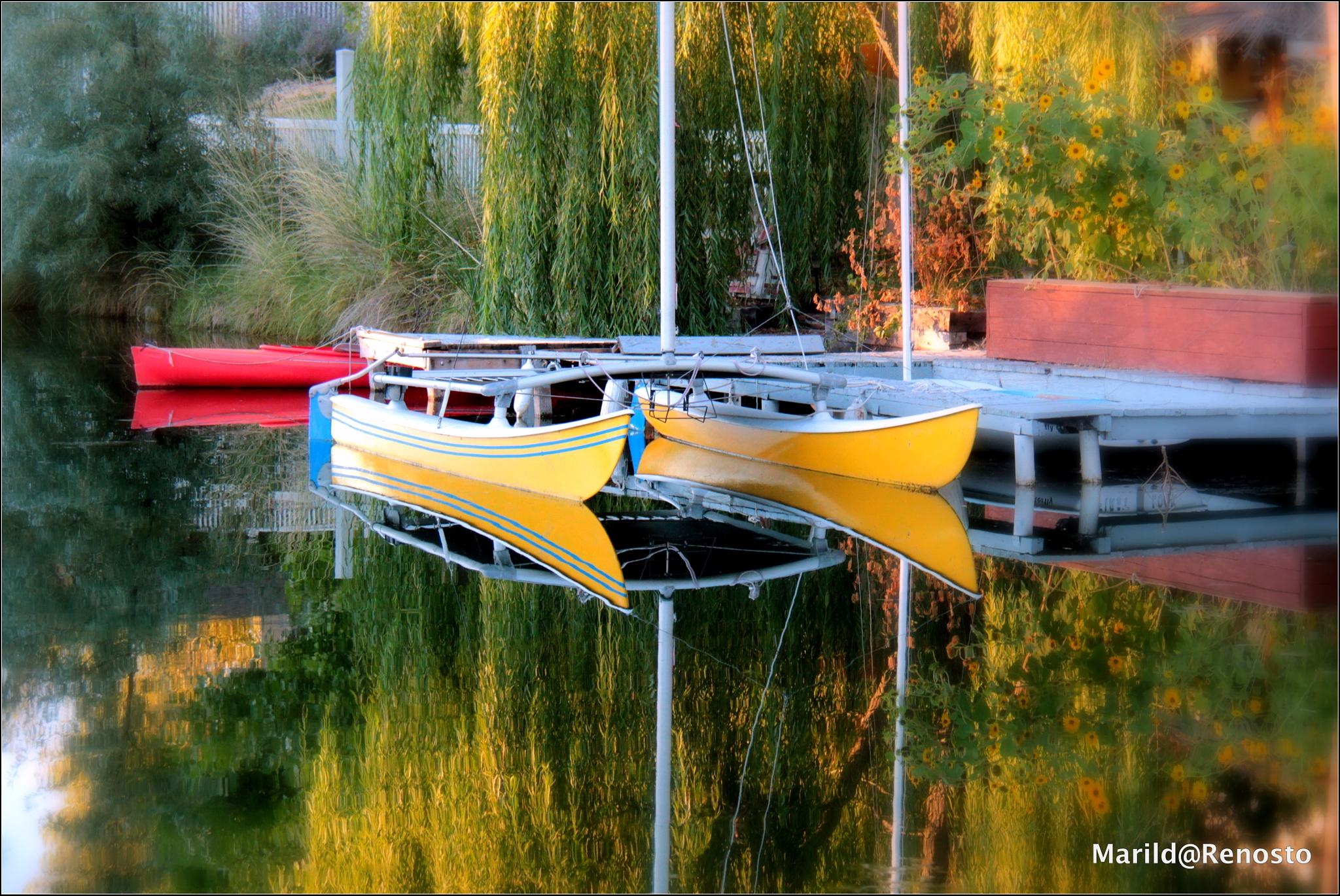 Boats by marilda.renosto