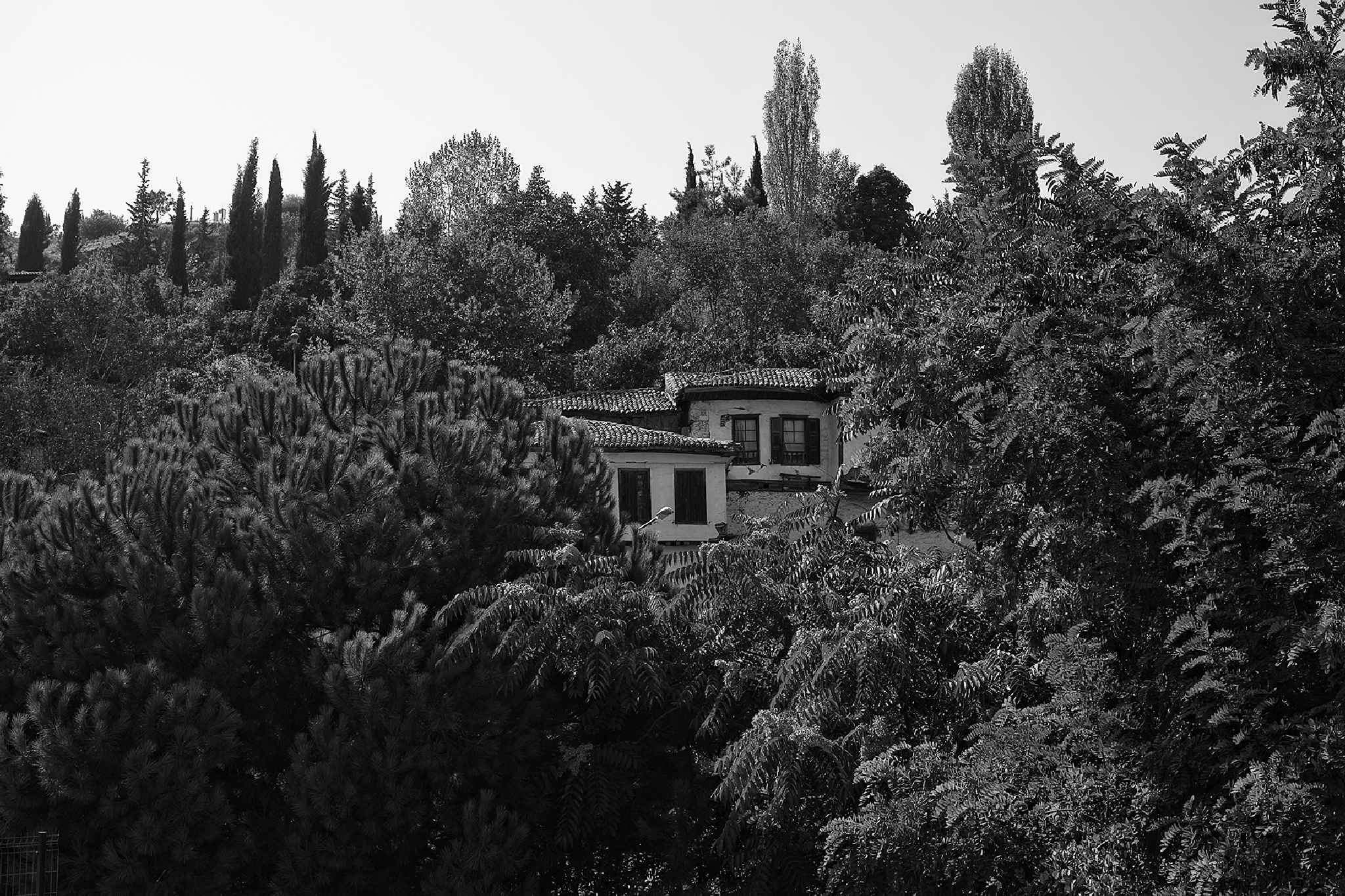 The houses up on the hill by Osman Tümay
