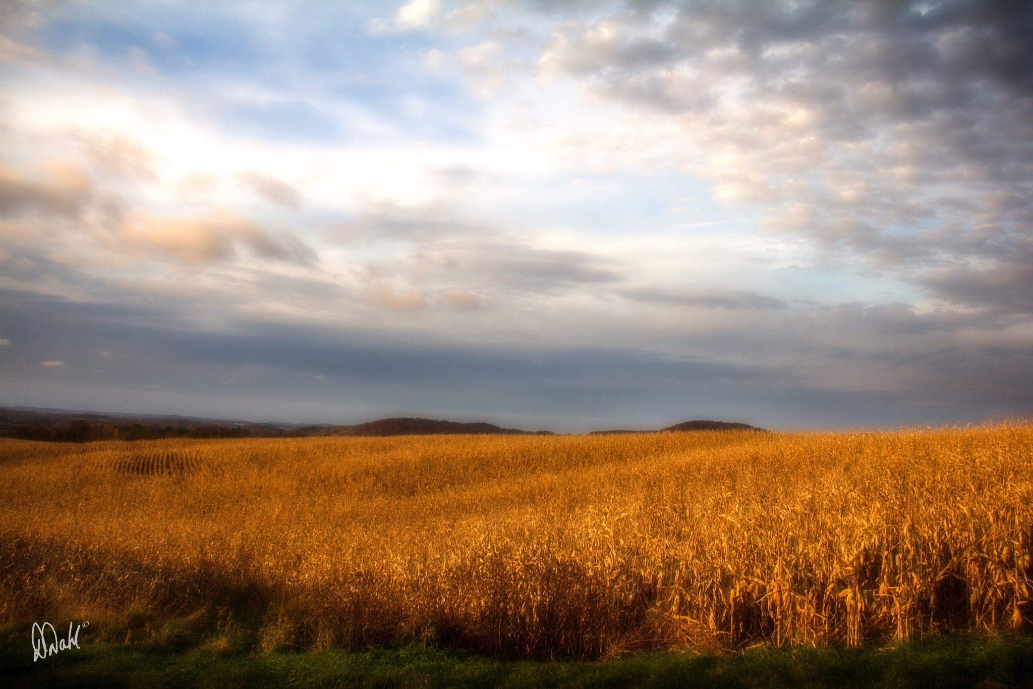 The corn, the sky and a fall sunset on its way by dianedoneit