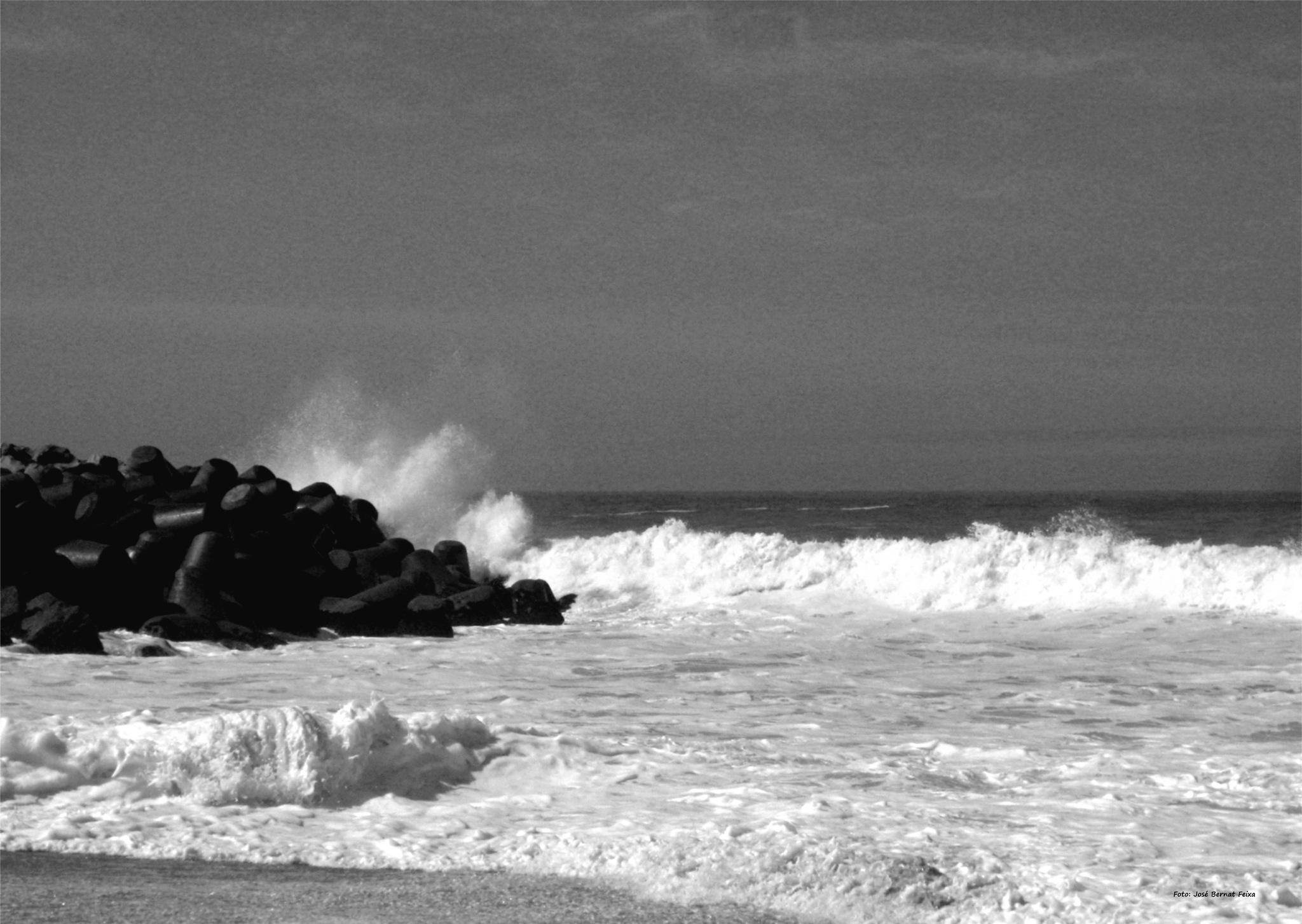 MAR Y ROCAS ; ZEE AND ROTSEN ; SEA AND ROCKS by José Bernat Feixa