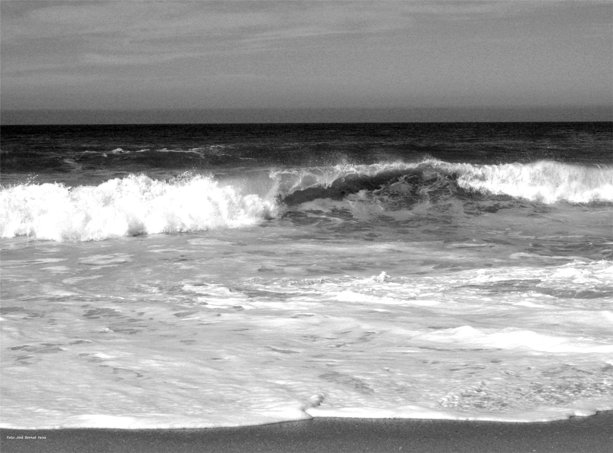 OLAS ; BRANDING ; WAVES by José Bernat Feixa