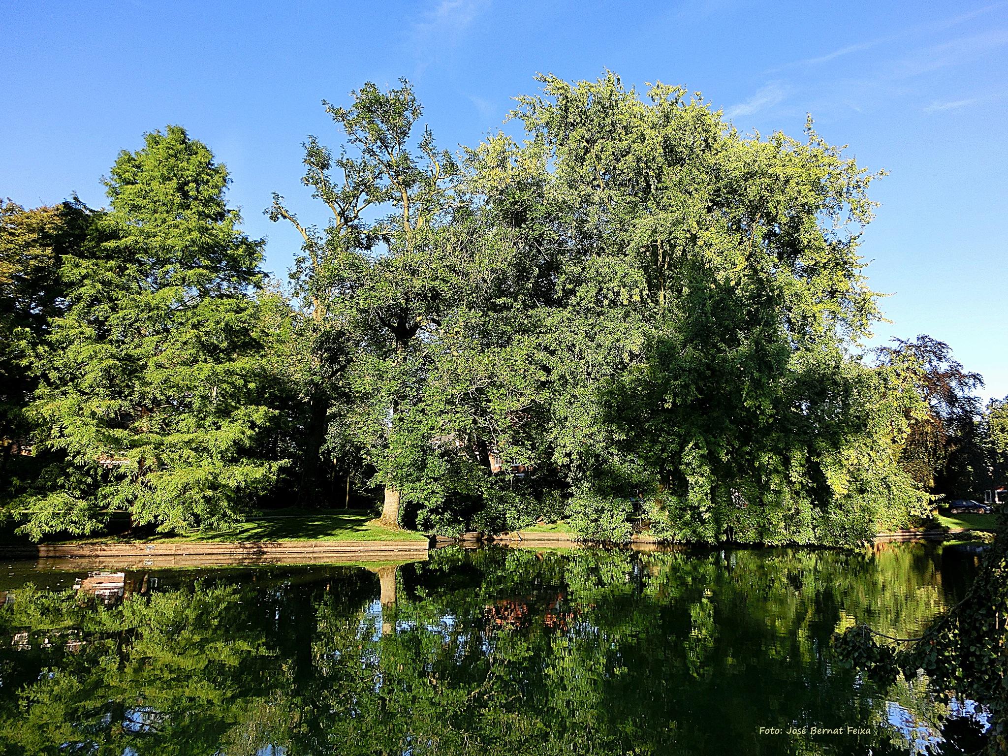 Reflejos de la Naturaleza; Weerspiegeling van de Natuur; Reflection of Nature by José Bernat Feixa