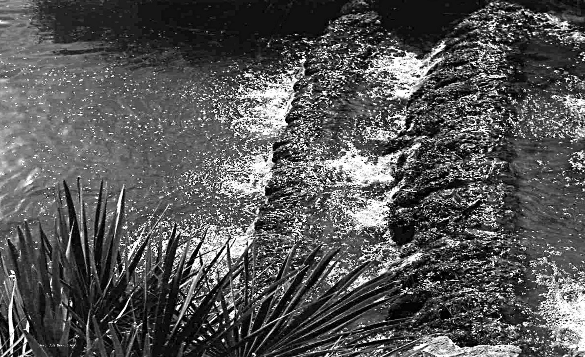 CASCADAS; WATERVALLEN; WATER FALLS (60's) by José Bernat Feixa