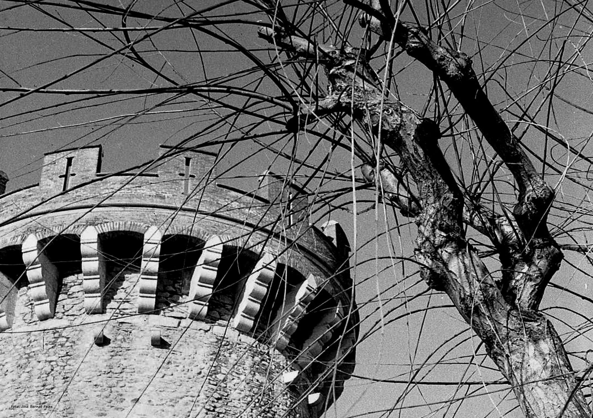 TORRE Y ÁRBOL; TOREN EN BOOM; TOWER AND TREE (60's) by José Bernat Feixa