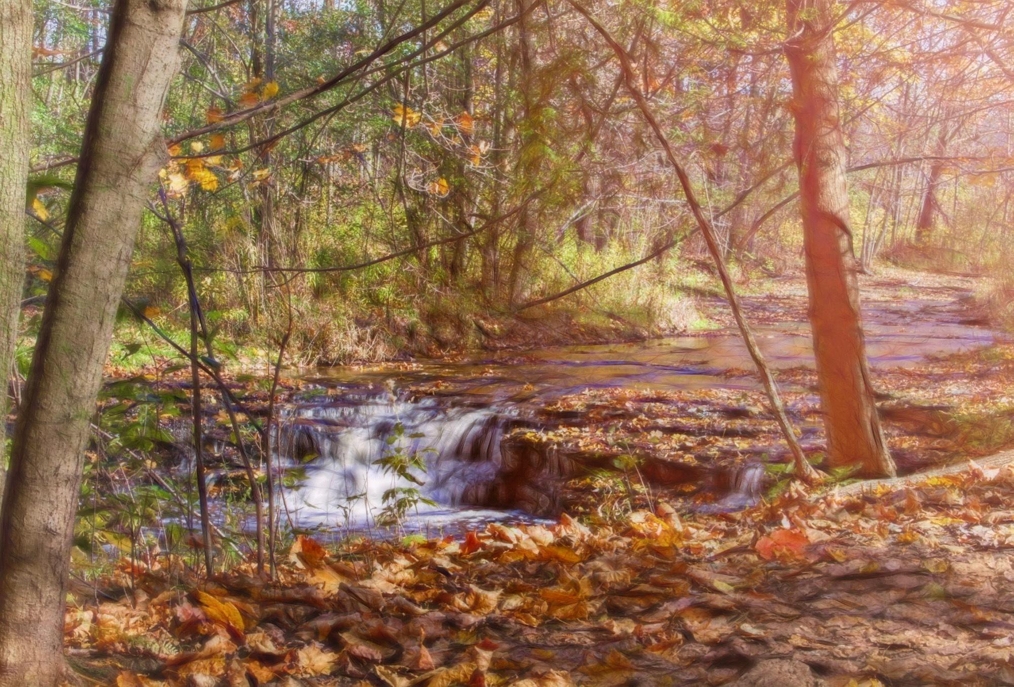 Nature's Palette by djensen