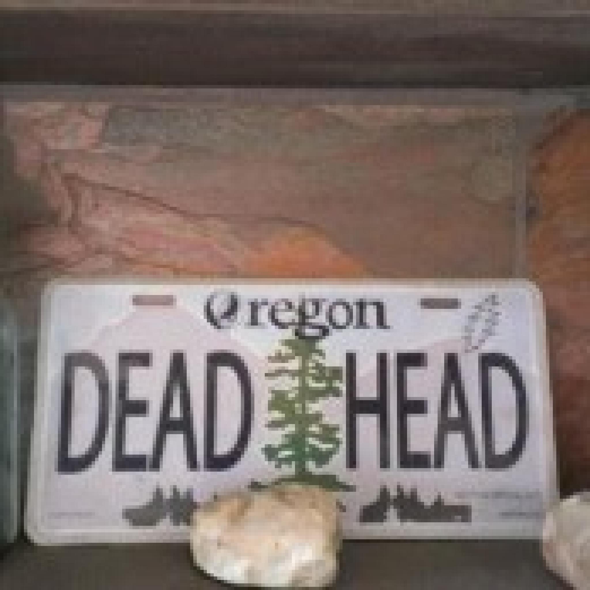 Dead Head - Oregon by KrystaGarrison