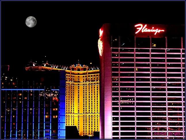 Flamingo Hotel, Las Vegas by kristine.kenyon