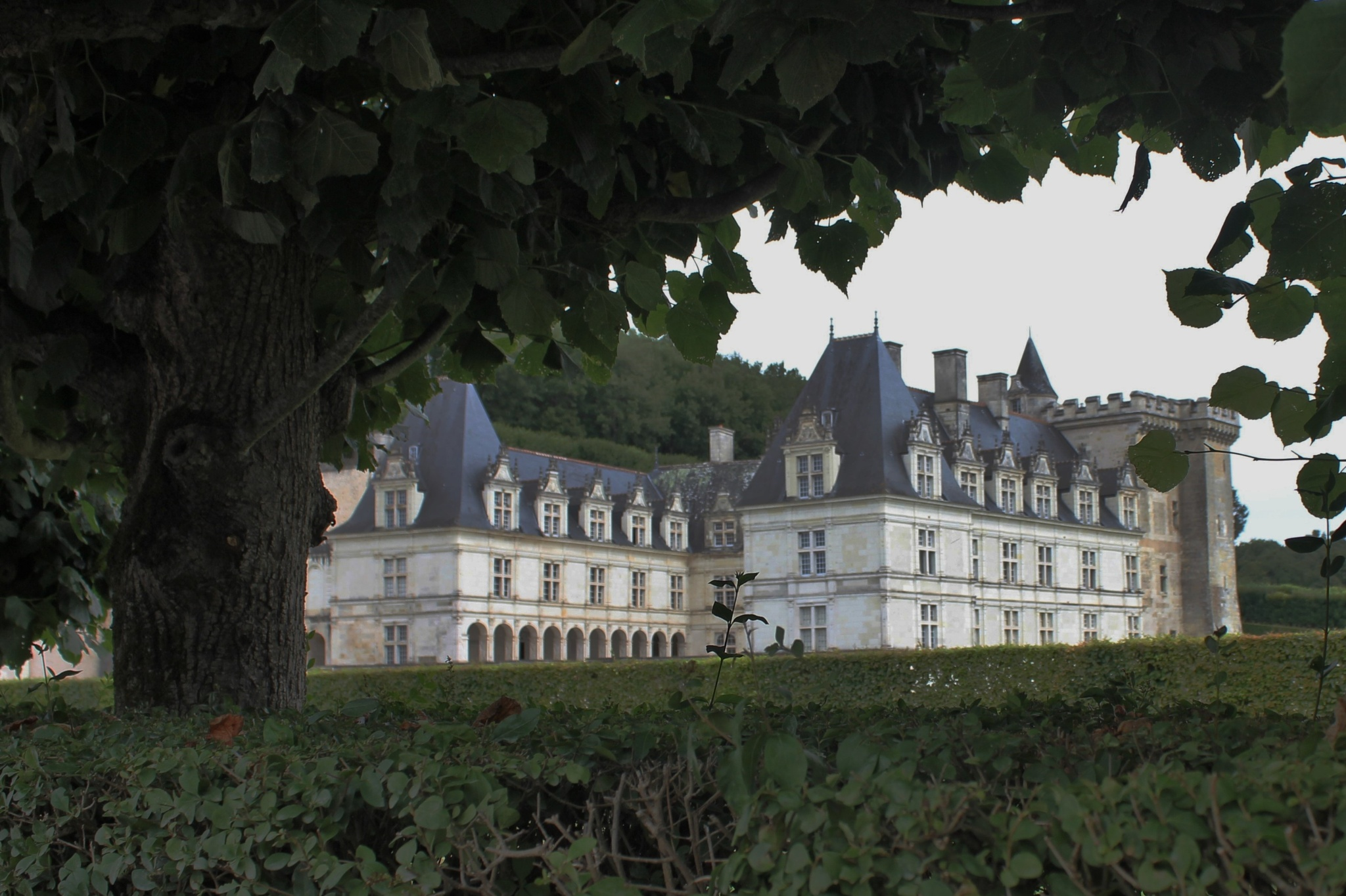Chateau Vilandry by colin.savidge