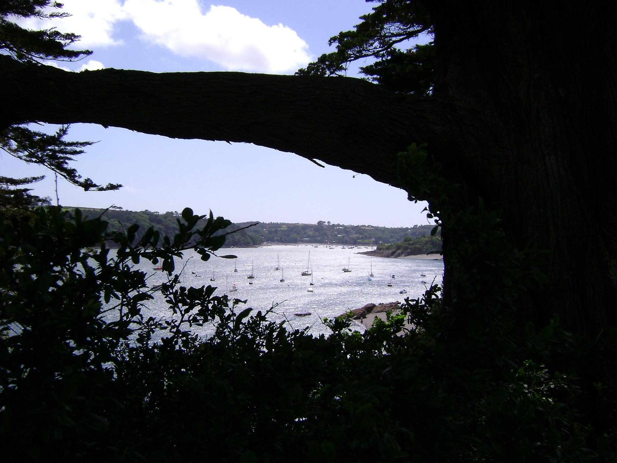 Helford Passage by rob.lloyd.3954