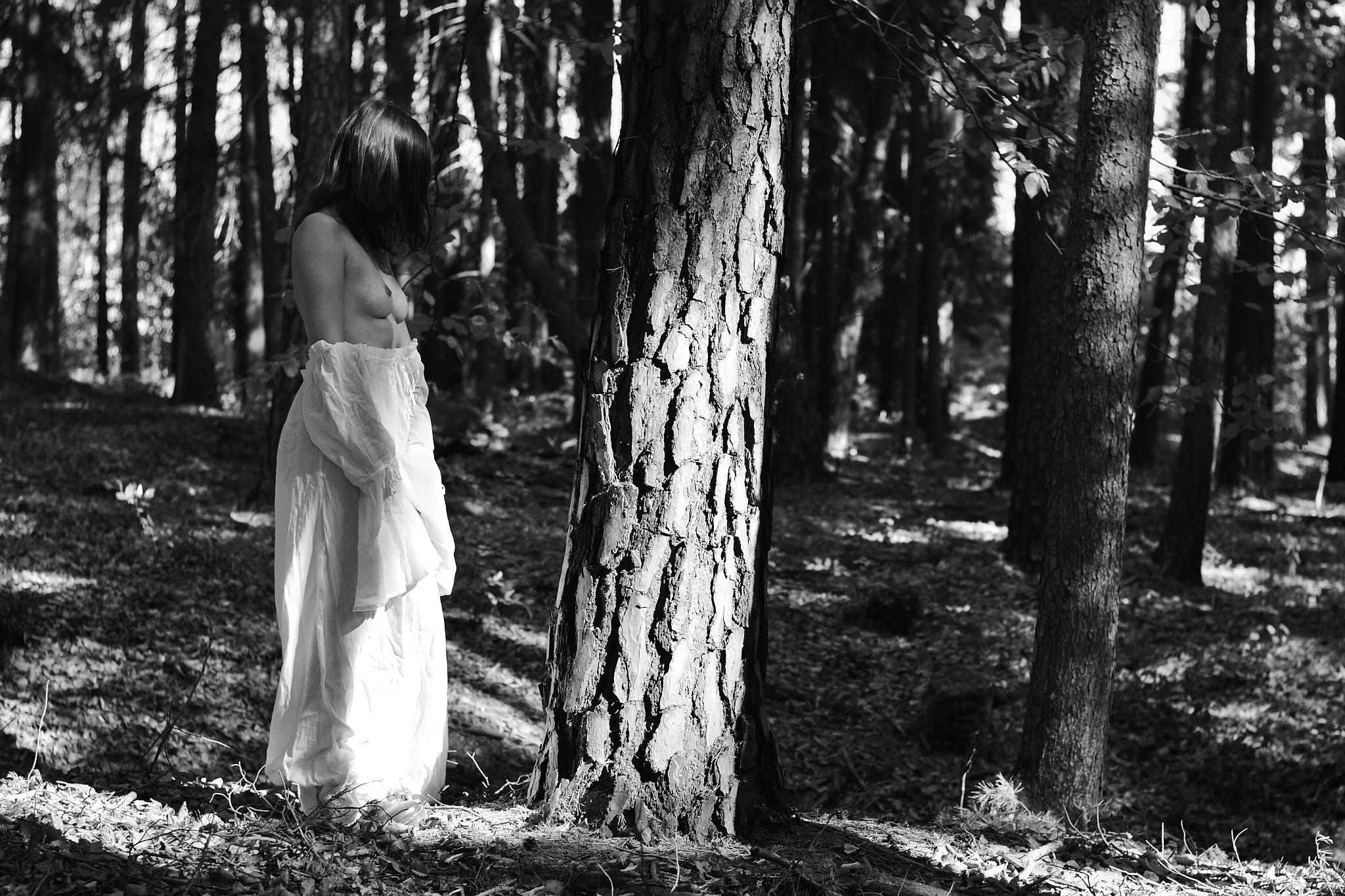Fairy in a Bosk by Inman