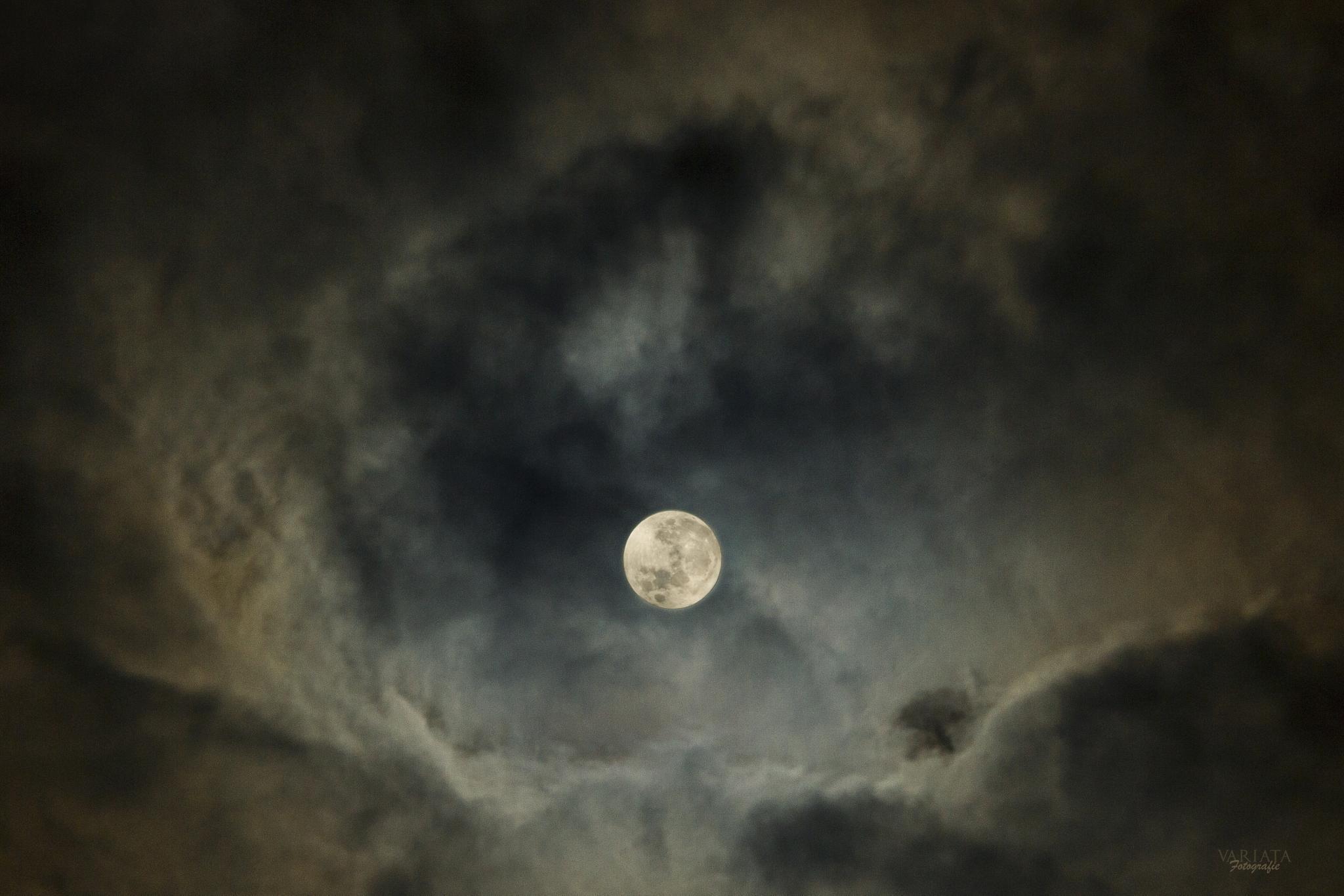 full moon by Susanne Koemen