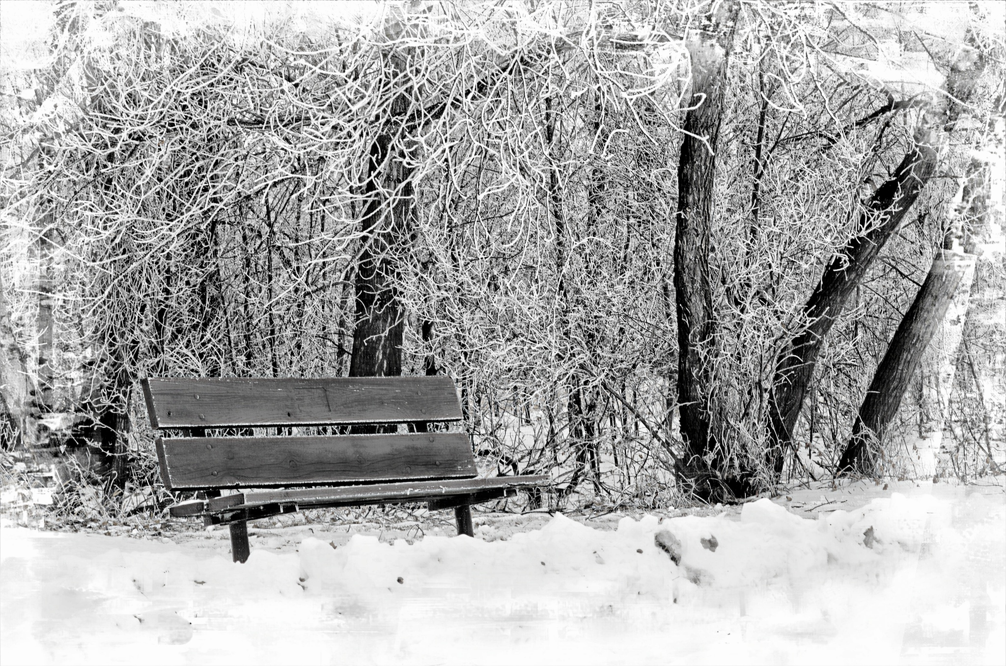 Empty Bench on a cold winters day by Kimberly Ronan