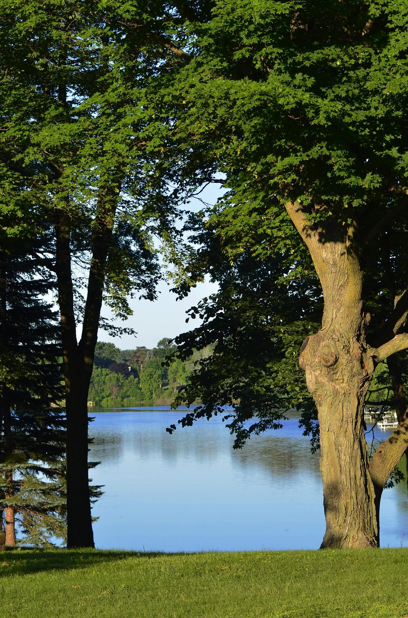 Lake View by Kimberly Ronan