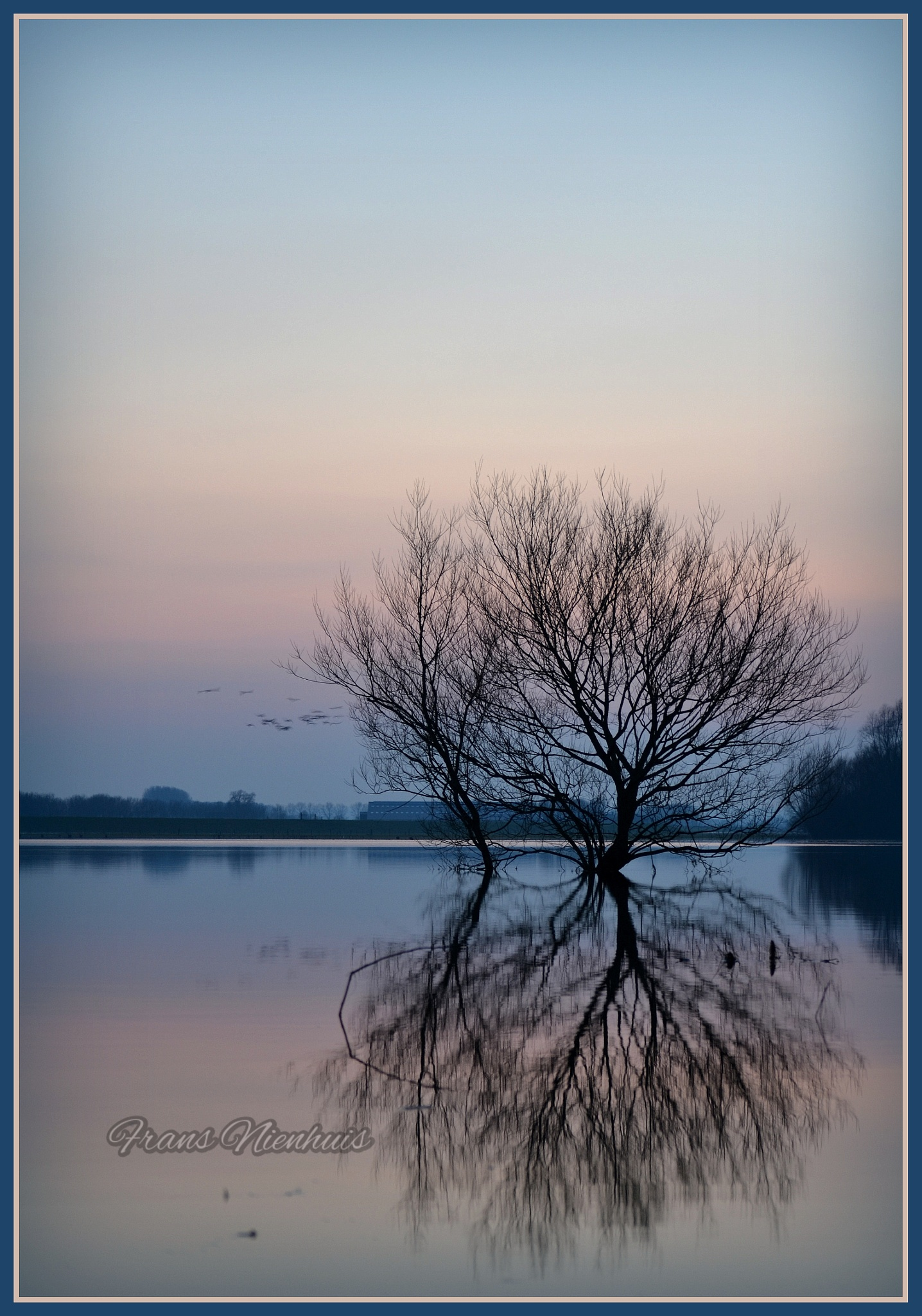 Tranquility in blue  by Frans Nienhuis