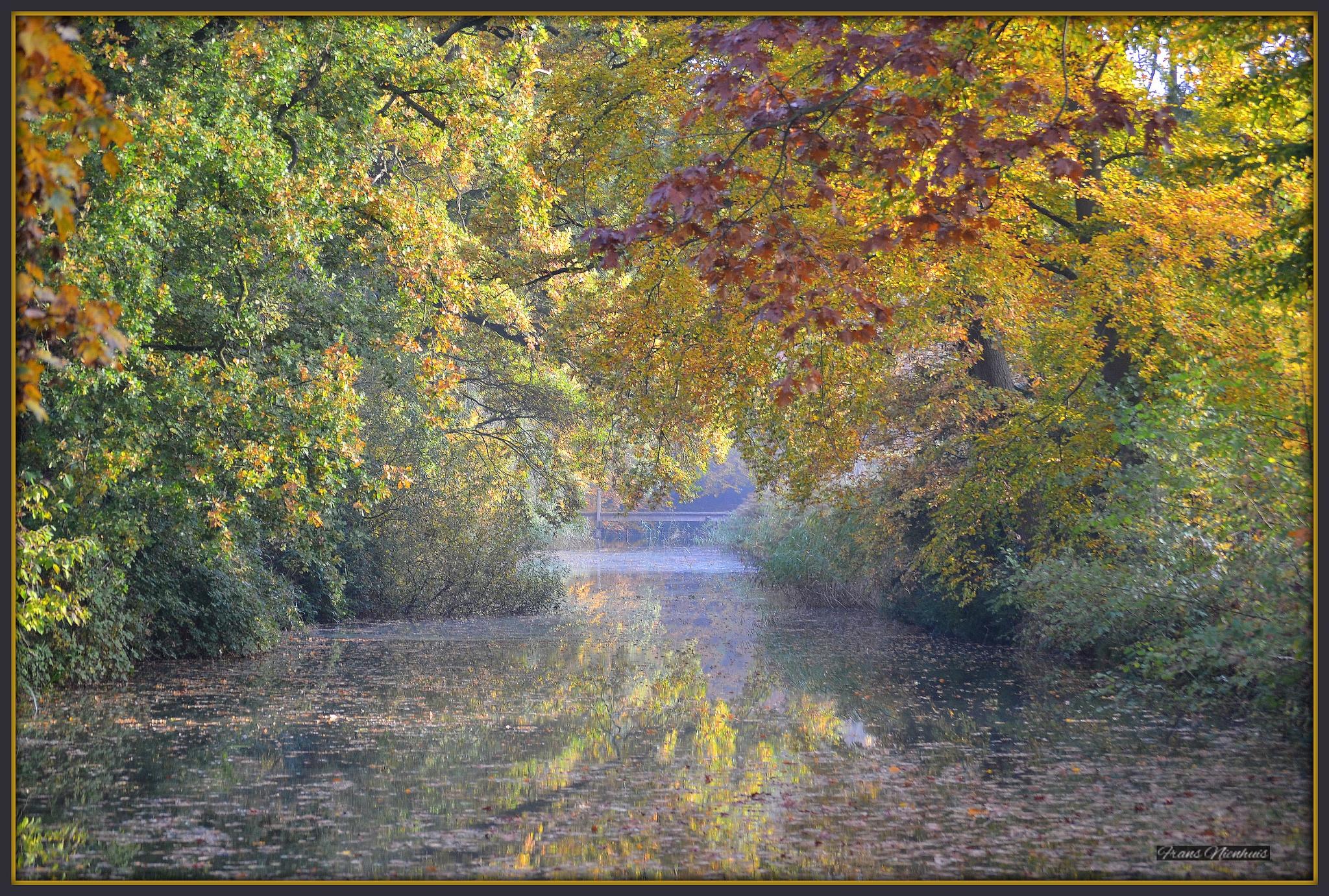 Autumn leaves, Kasteel Slangenburg, Doetinchem, the Netherlands by Frans Nienhuis