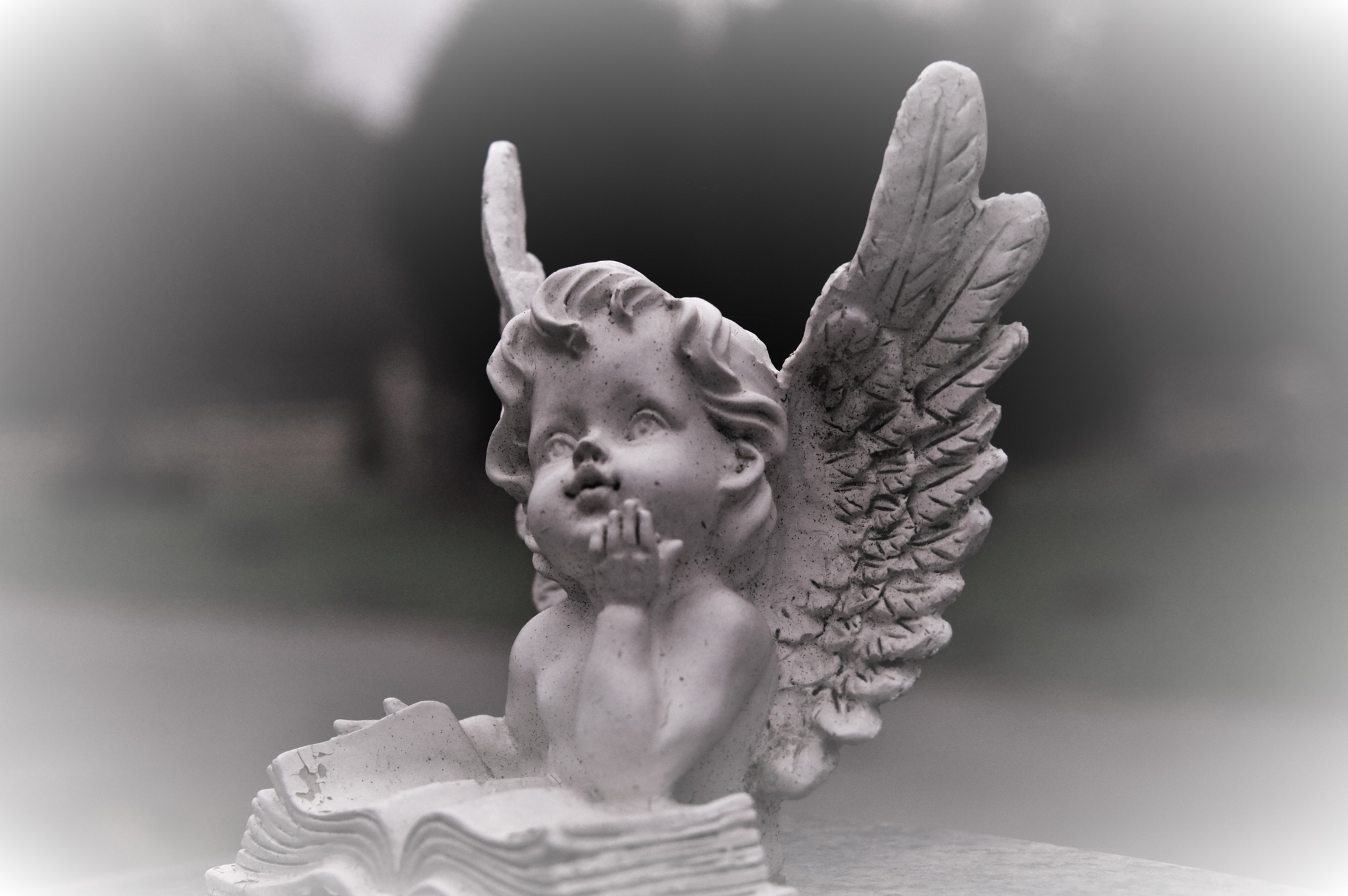 Angel in cemetery Hamburg  by romeo.draghici